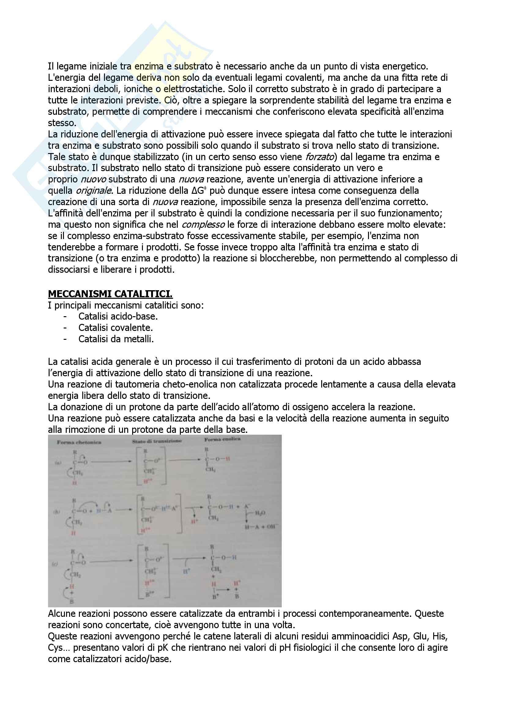 Biochimica Pag. 36