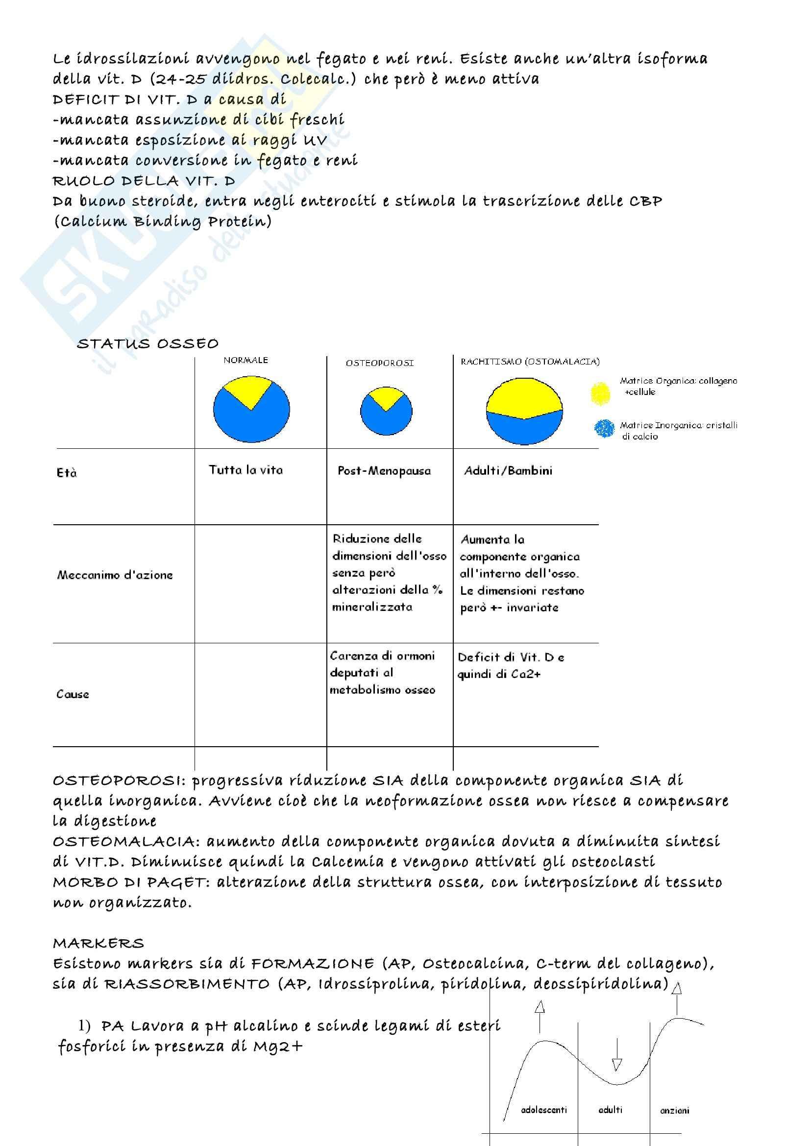 Biochimica clinica - Appunti Pag. 36