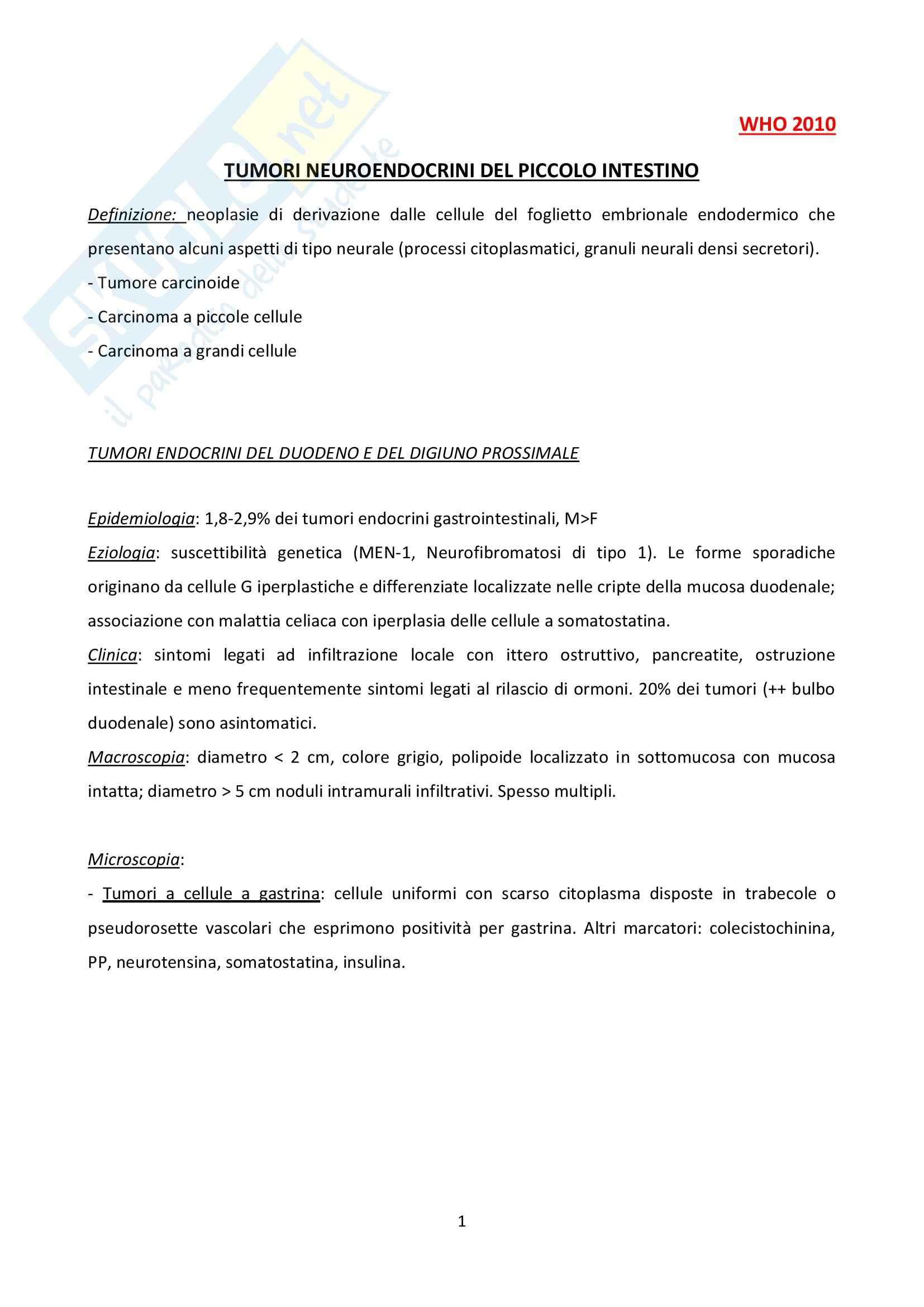 Tumori Neuroendocrini, Anatomia patologica