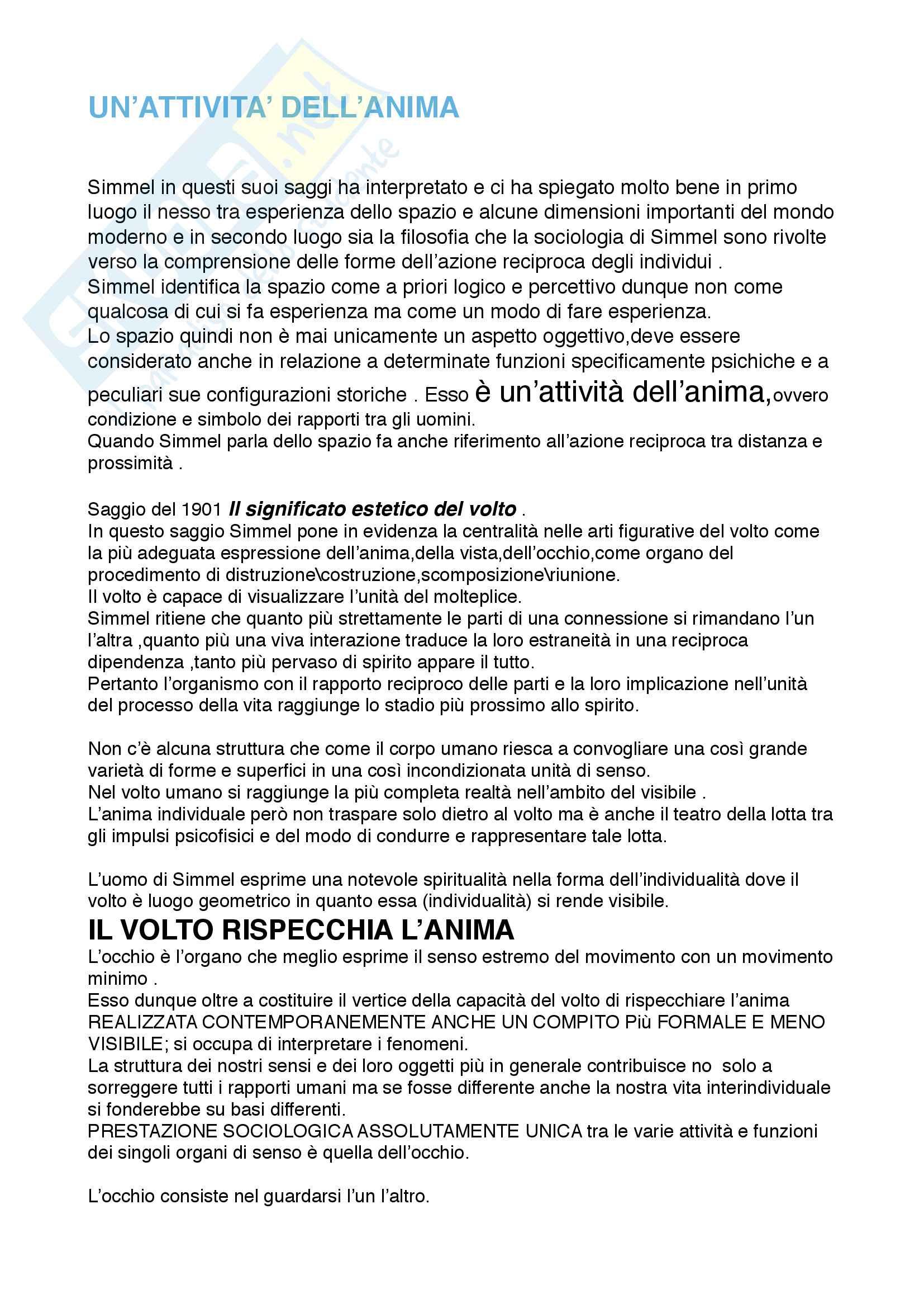 Riassunto esame filosofia della cultura, prof. De Simone Antonio, libro consigliato Il ponte sul grande abisso, De Simone, D'Alessandro