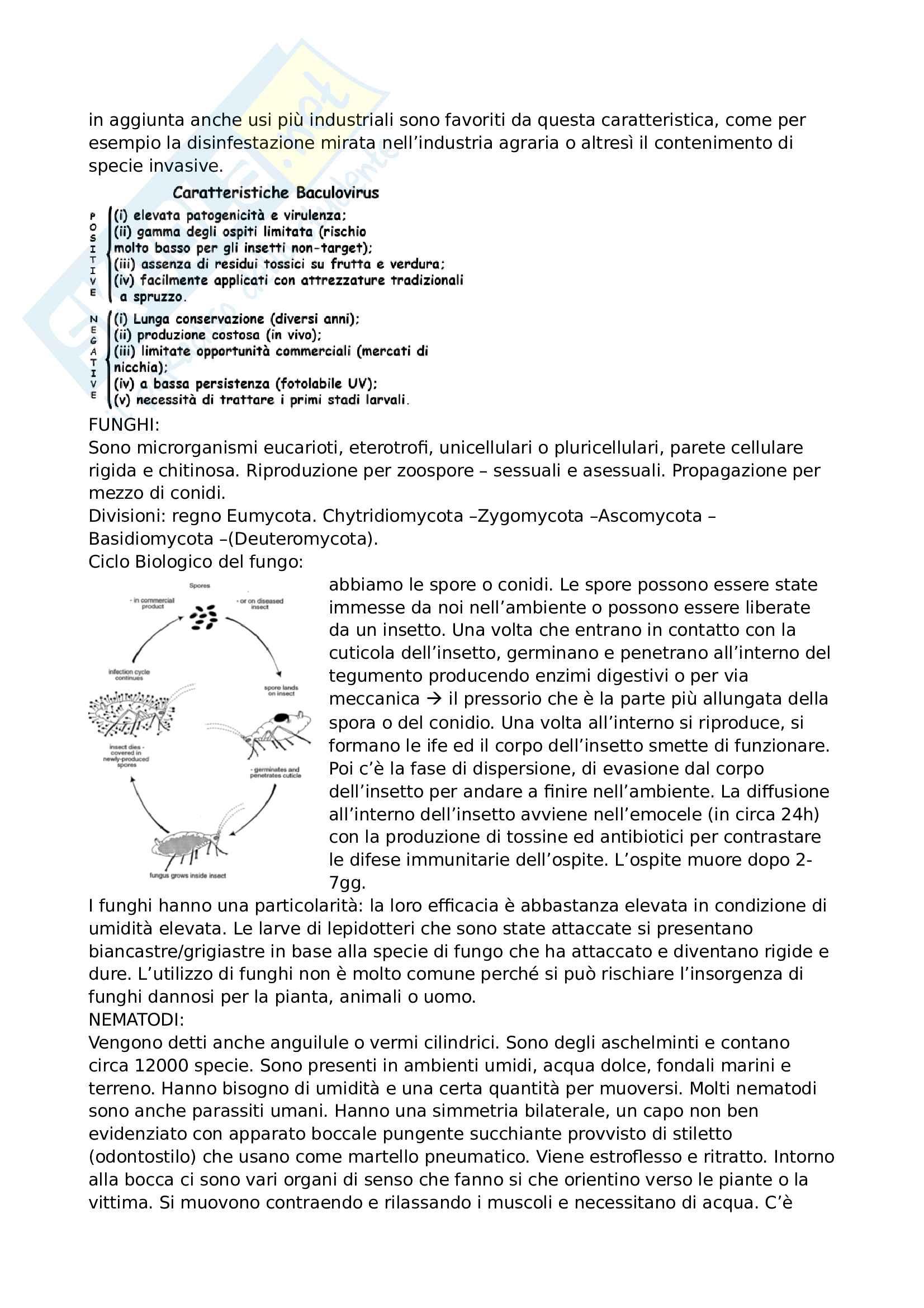Appunti lotta integrata Pag. 21