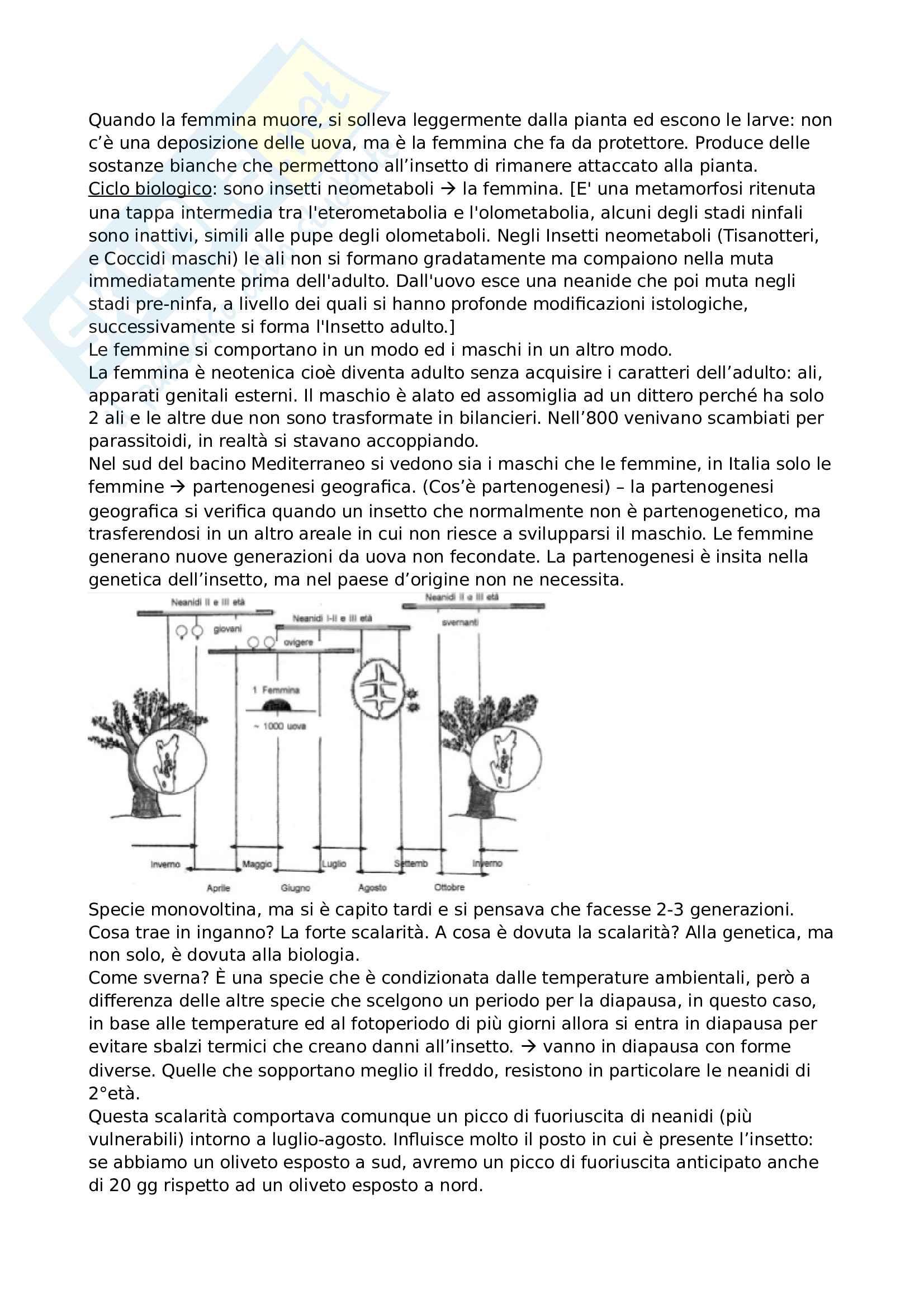 Appunti lotta integrata Pag. 41