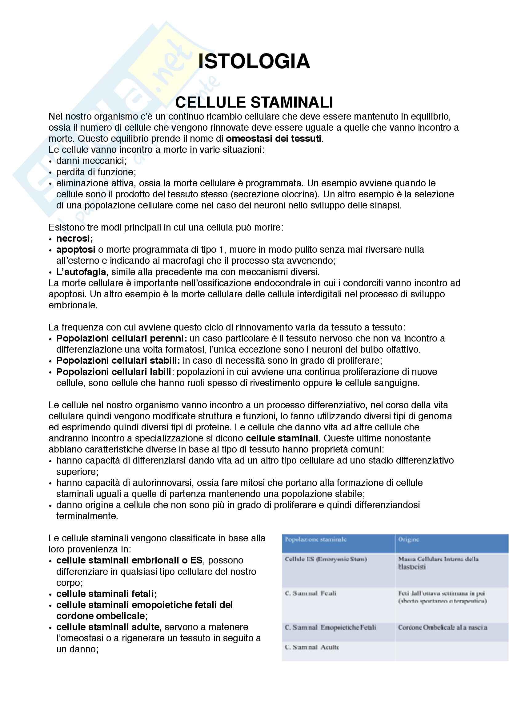Documento completo per parte di Istologia corso med 3-4 Unipd