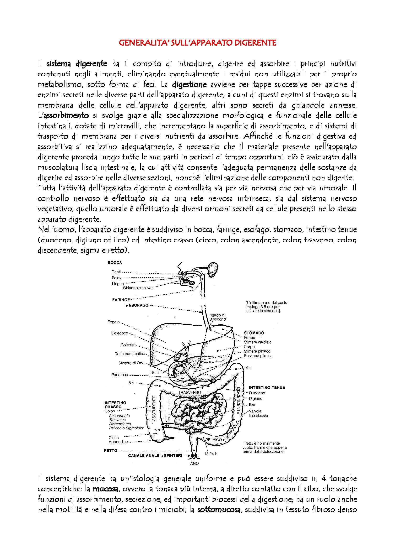 appunto M. La Guardia Fisiologia