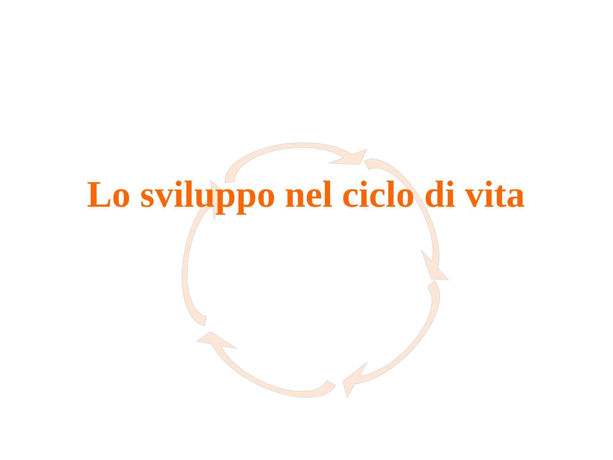 Sviluppo nel ciclo di vita