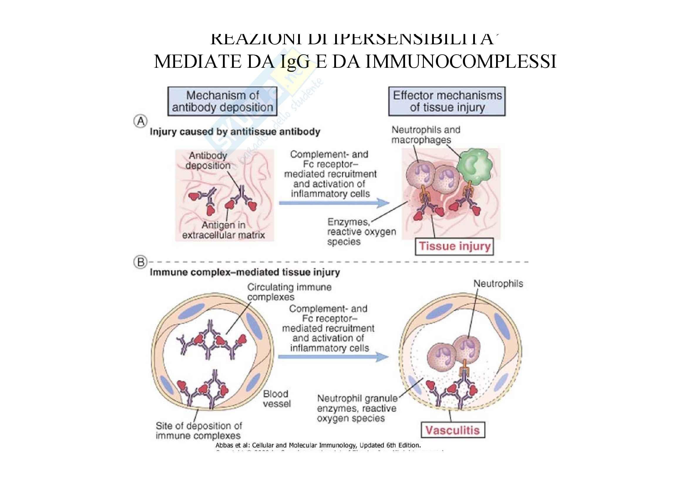 Immunologia - ipersensibilità di II tipo