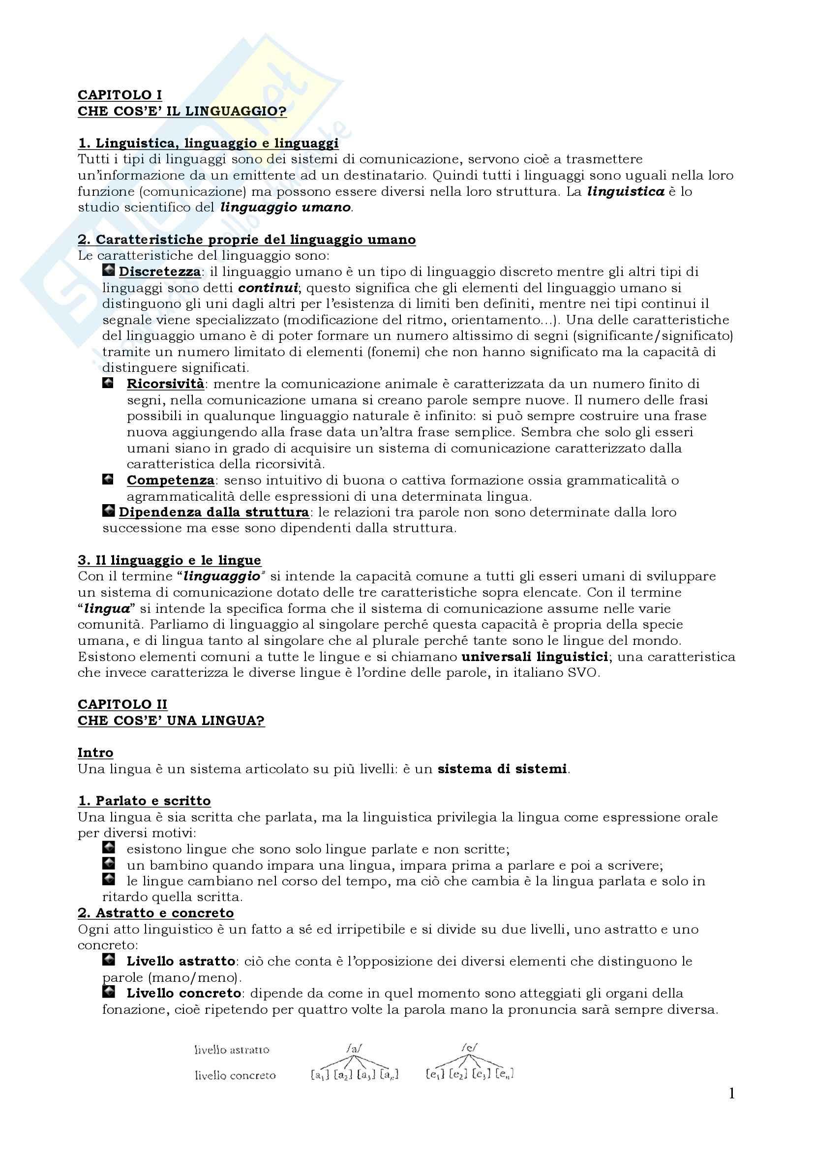 Riassunto esame Linguistica Italiana, prof. Facchetti, libro consigliato Le Lingue e il Linguaggio, Graffi, Scalise