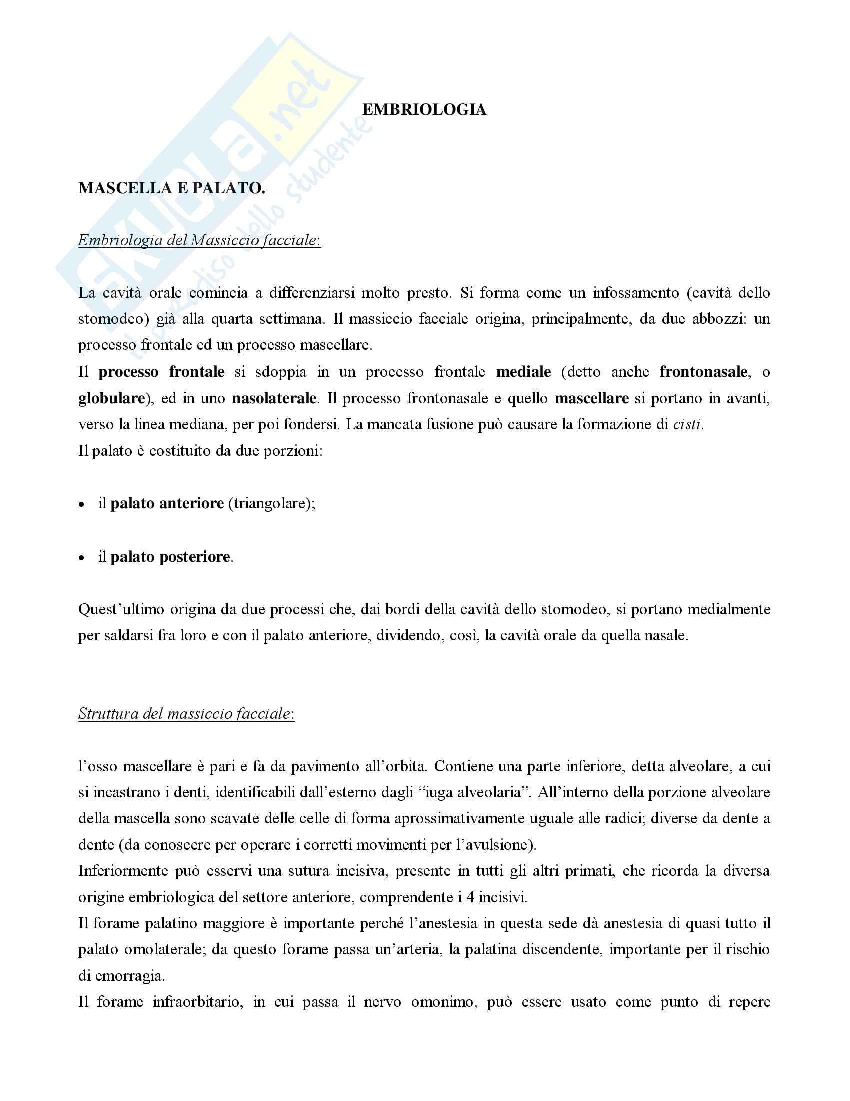 appunto F. Colamatteo Otorinolaringoiatria e Odontostomatologia