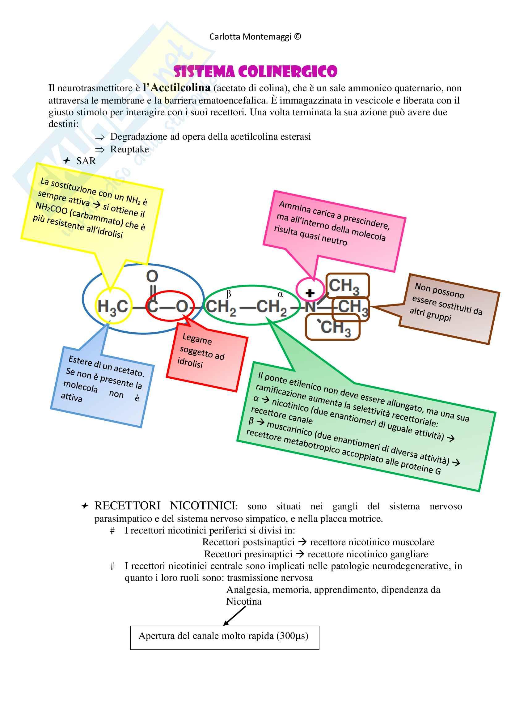Chimica farmaceutica 2 - teoria