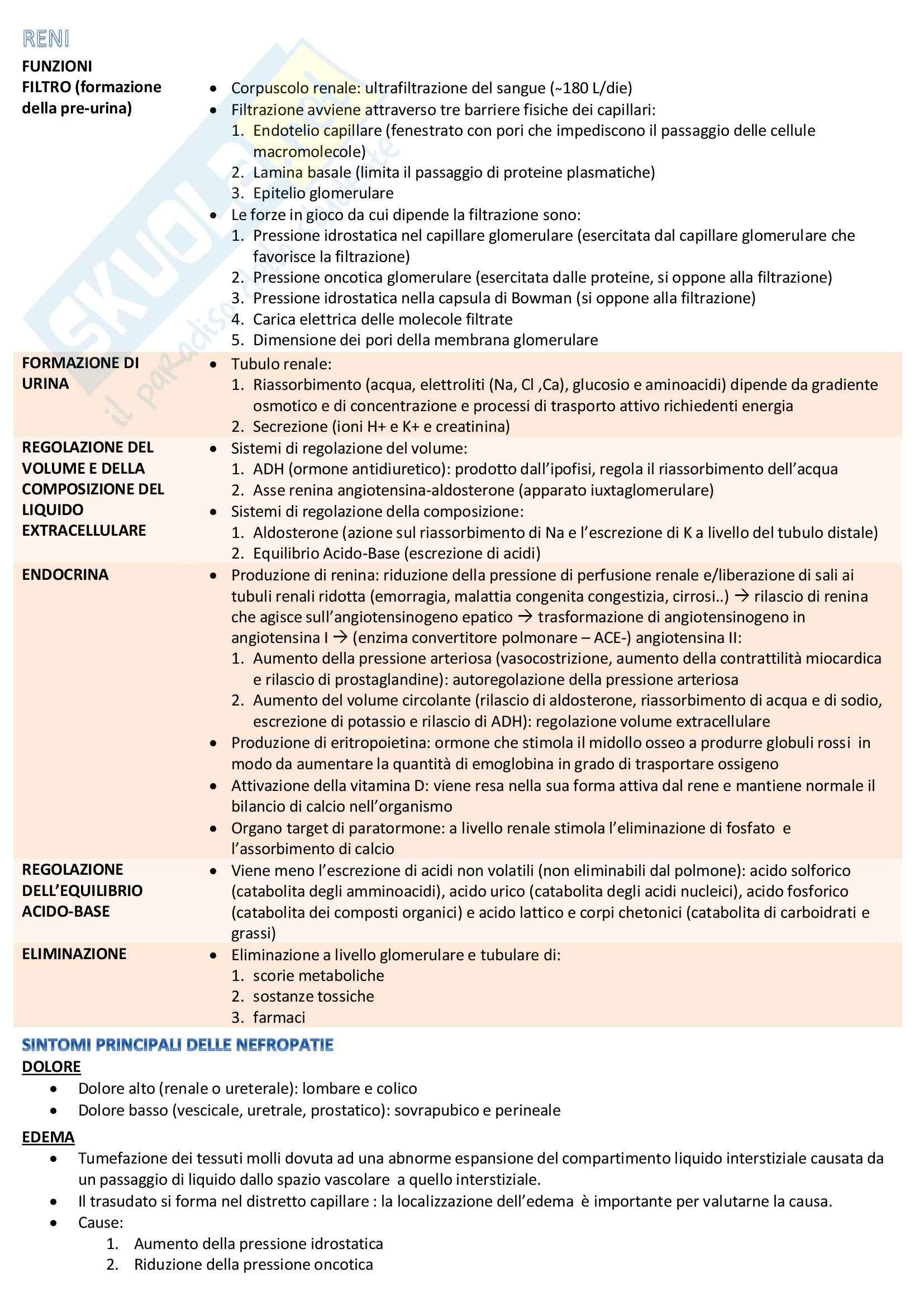 Riassunto esame Metodologia clinica infermieristica 1, prof. Genovesi