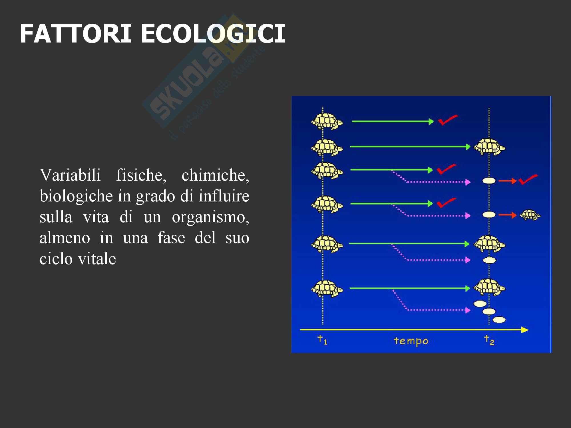Ecologia Condizioni, risorse e Fattori limitanti la Produttività Pag. 2