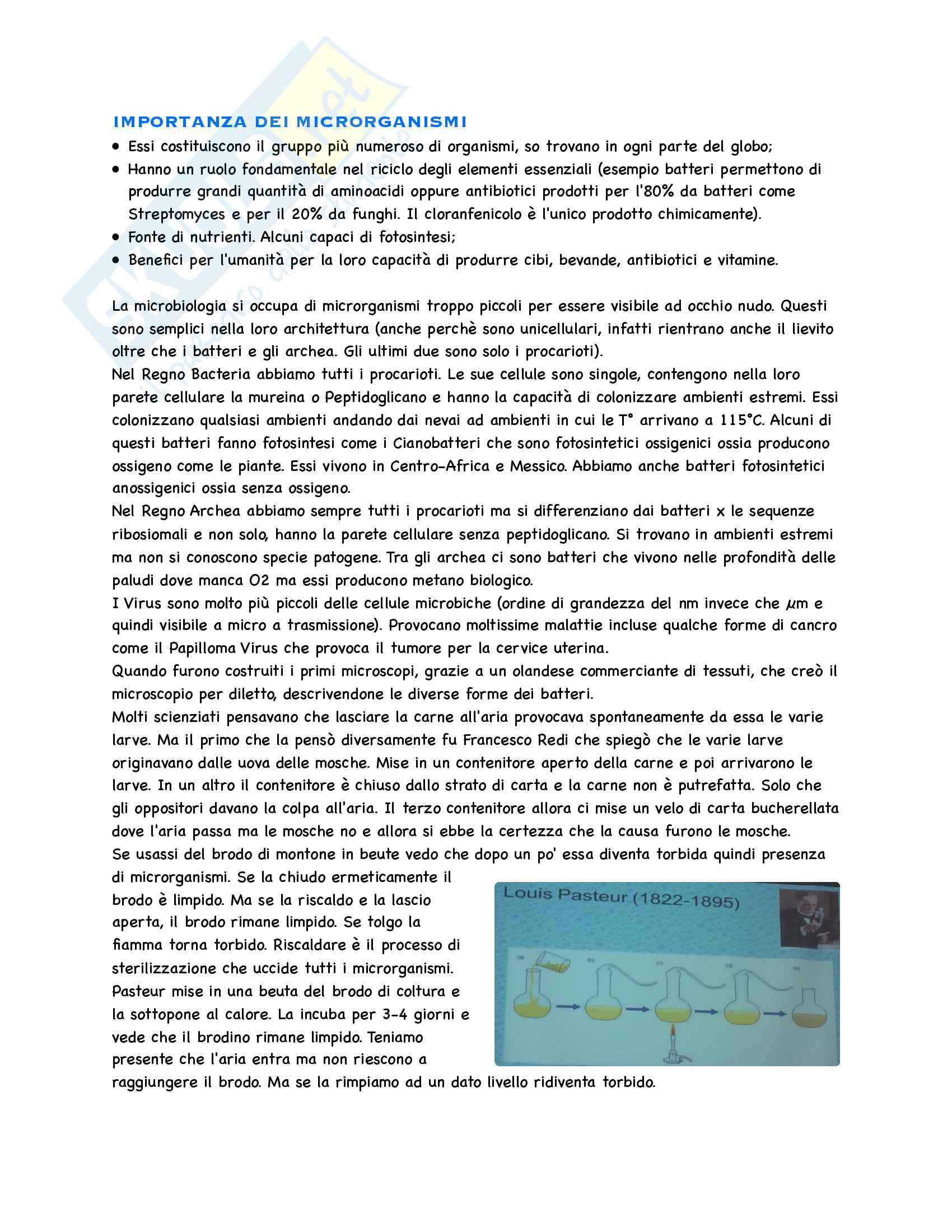 Microbiologia Appunti Parte 1 Pag. 2