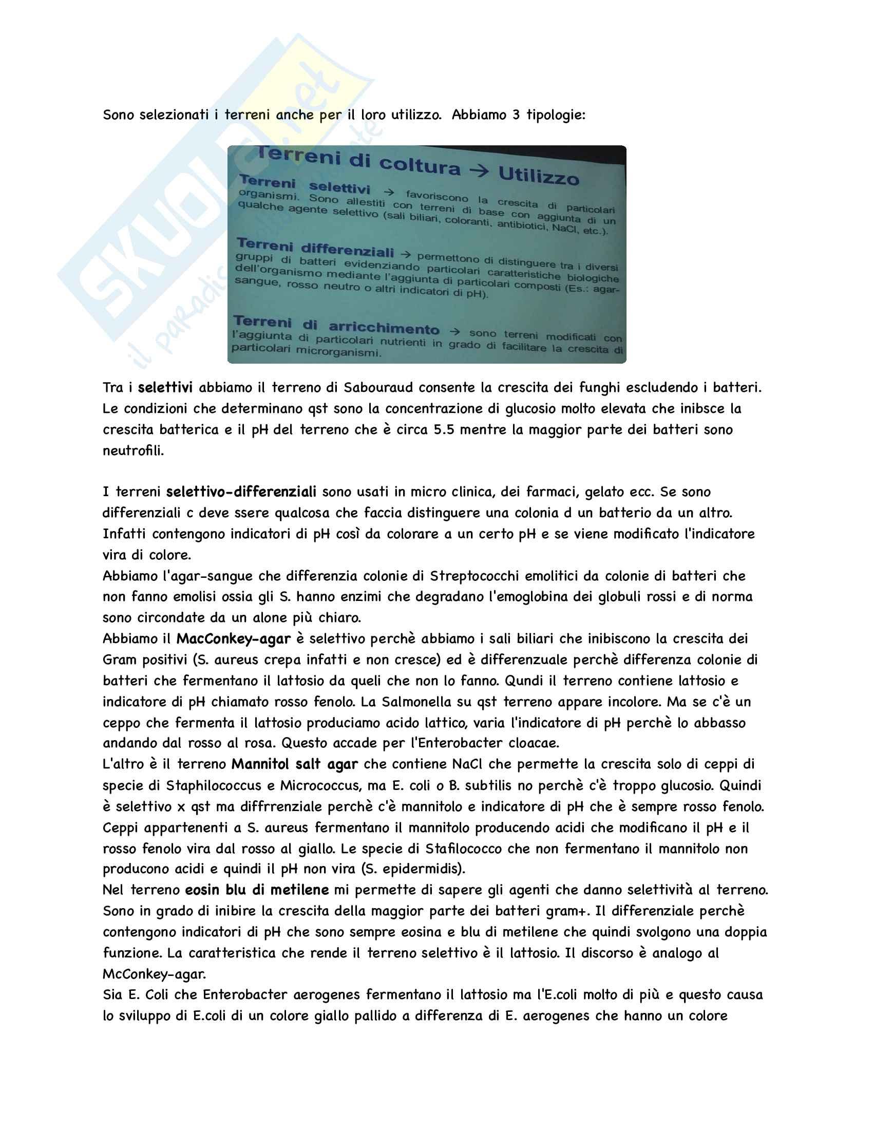 Microbiologia Appunti Parte 1 Pag. 31