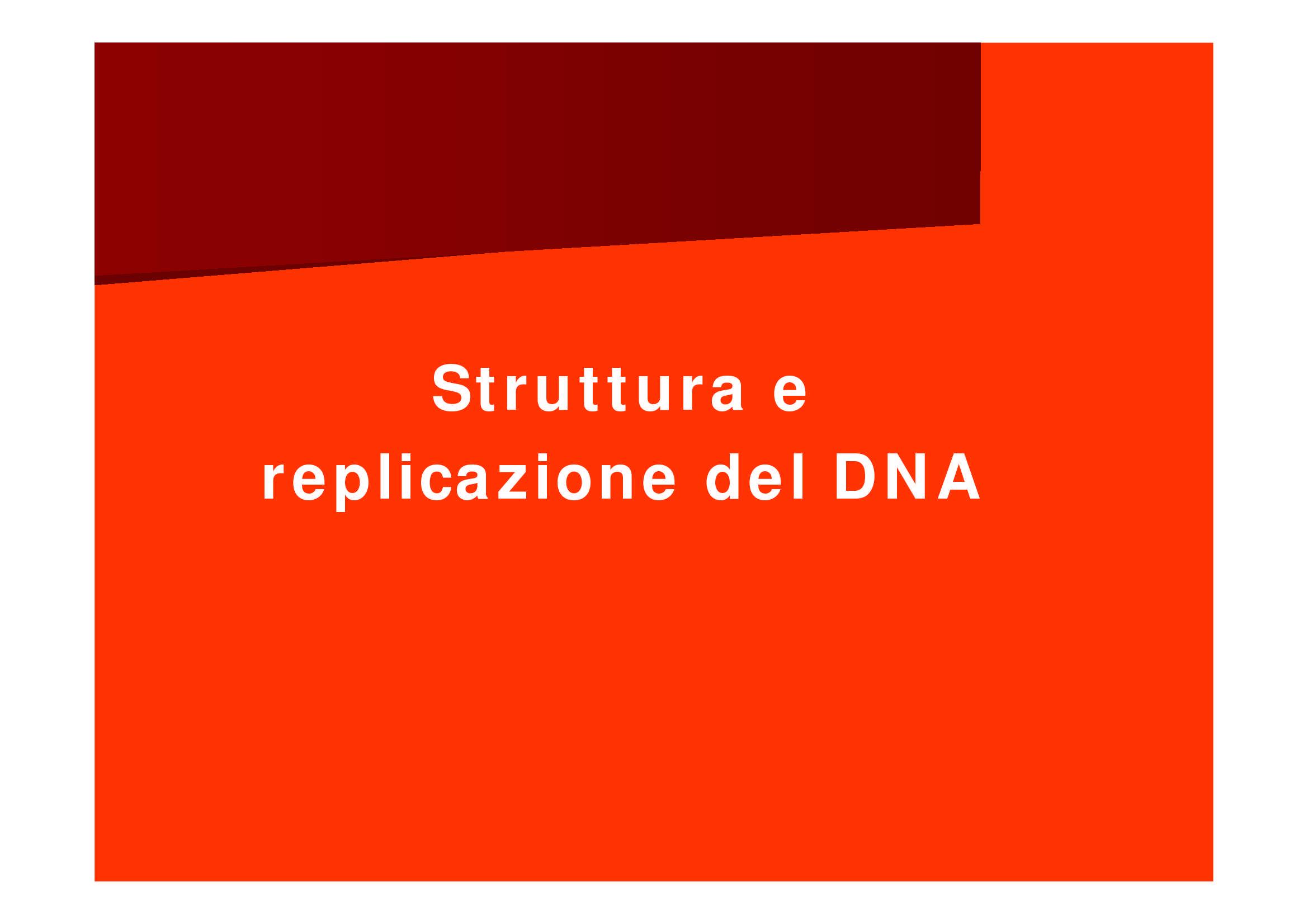 Struttura e replicazione DNA
