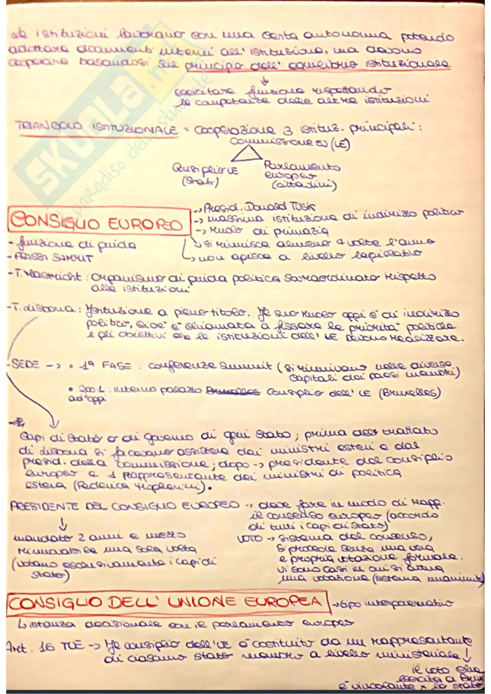 Diritto Dell'Unione Europea Pag. 16