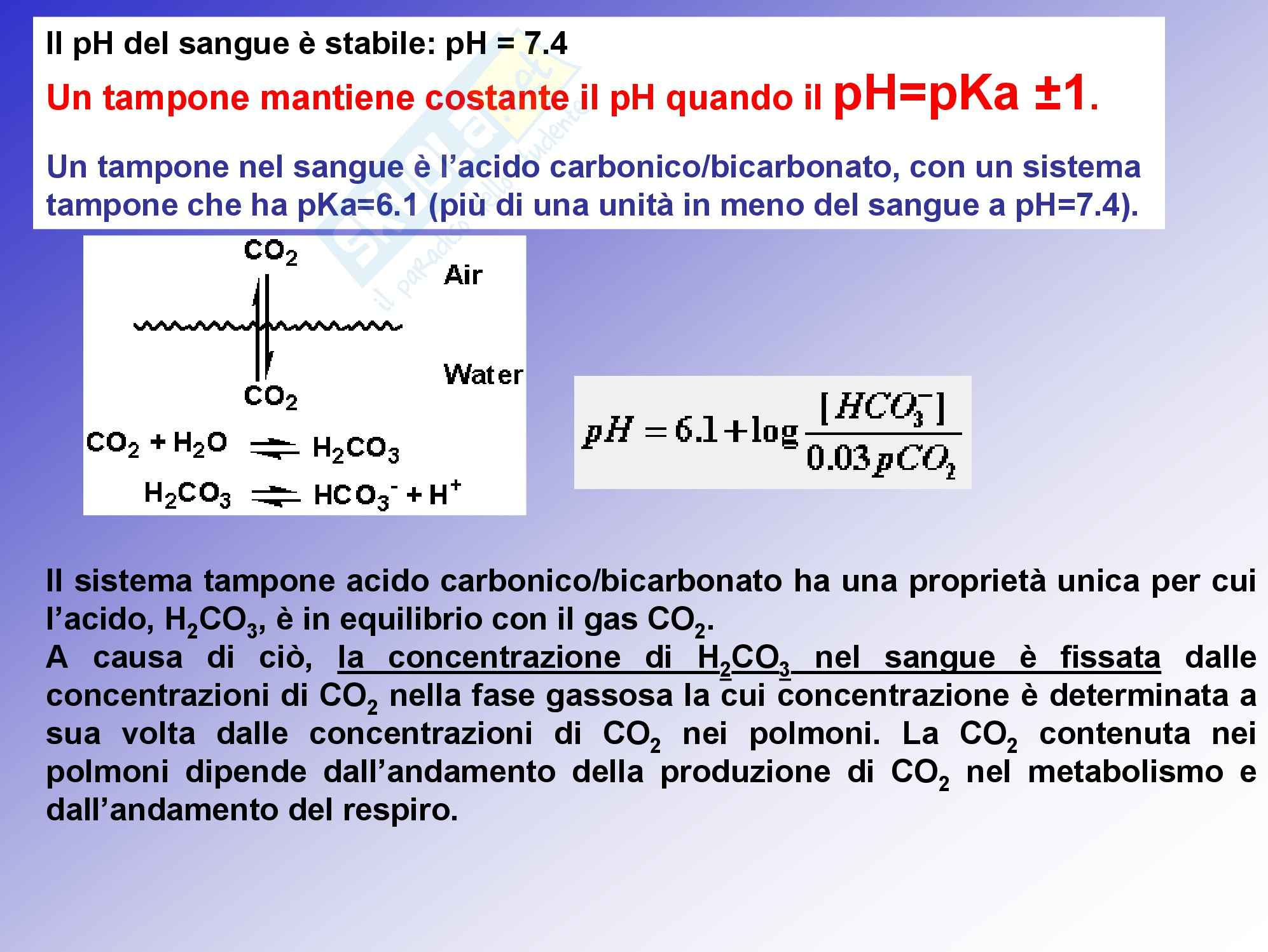 Chimica generale - le soluzioni tampone Pag. 16