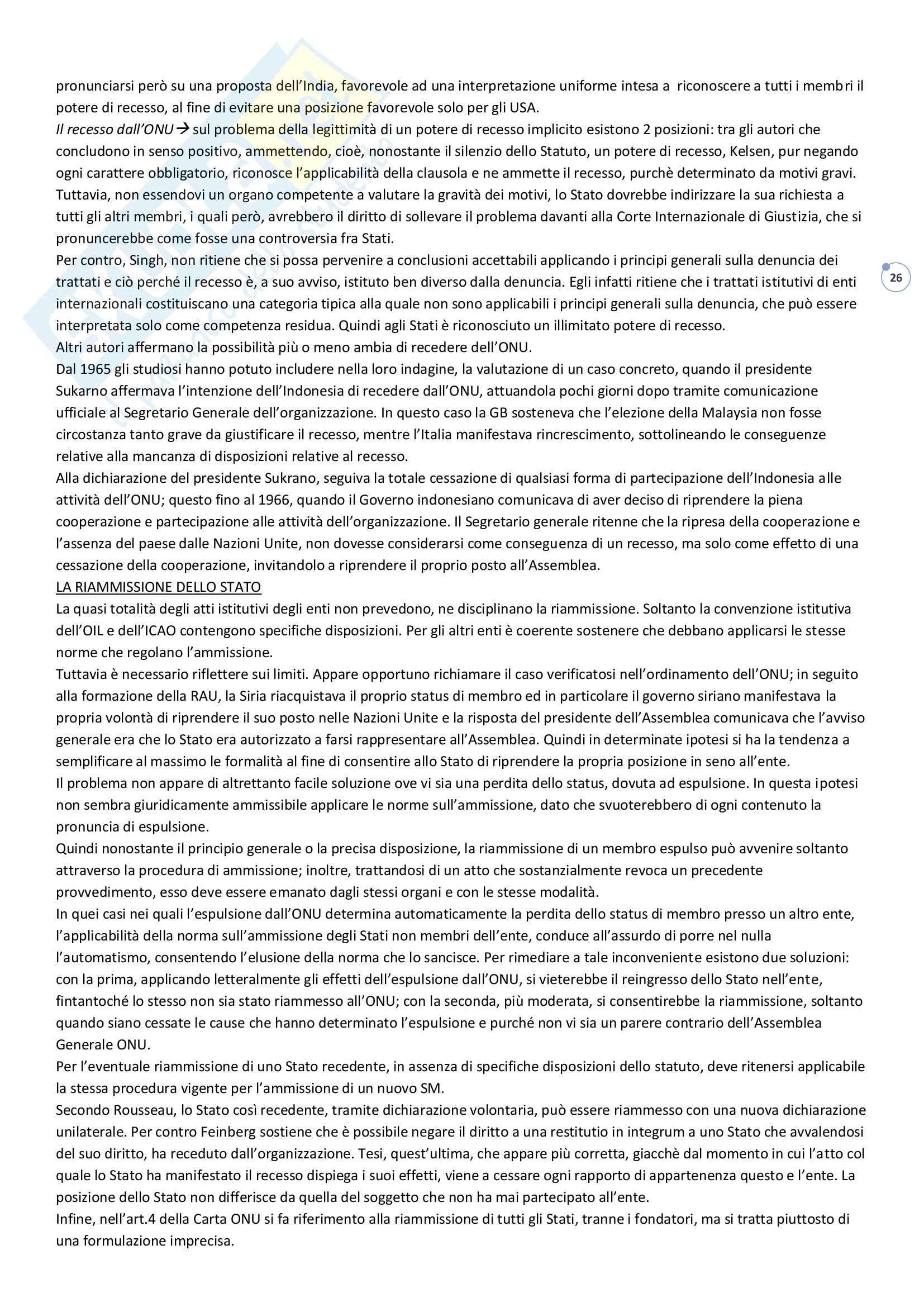 Organizzazione internazionale - Appunti Pag. 16