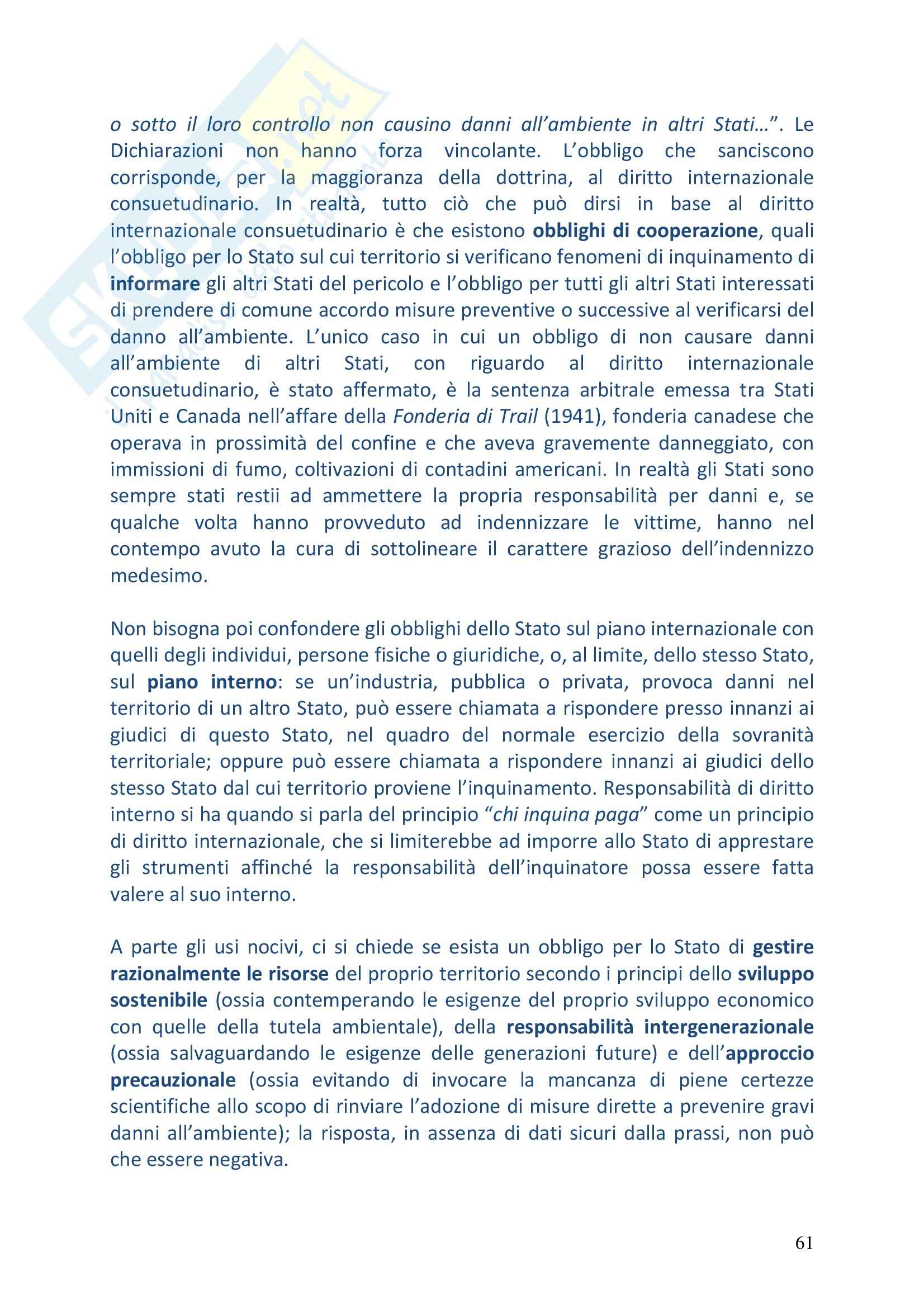 Riassunto esame Diritto Internazionale, prof. Vitucci, libro consigliato Diritto Internazionale, Conforti Pag. 61