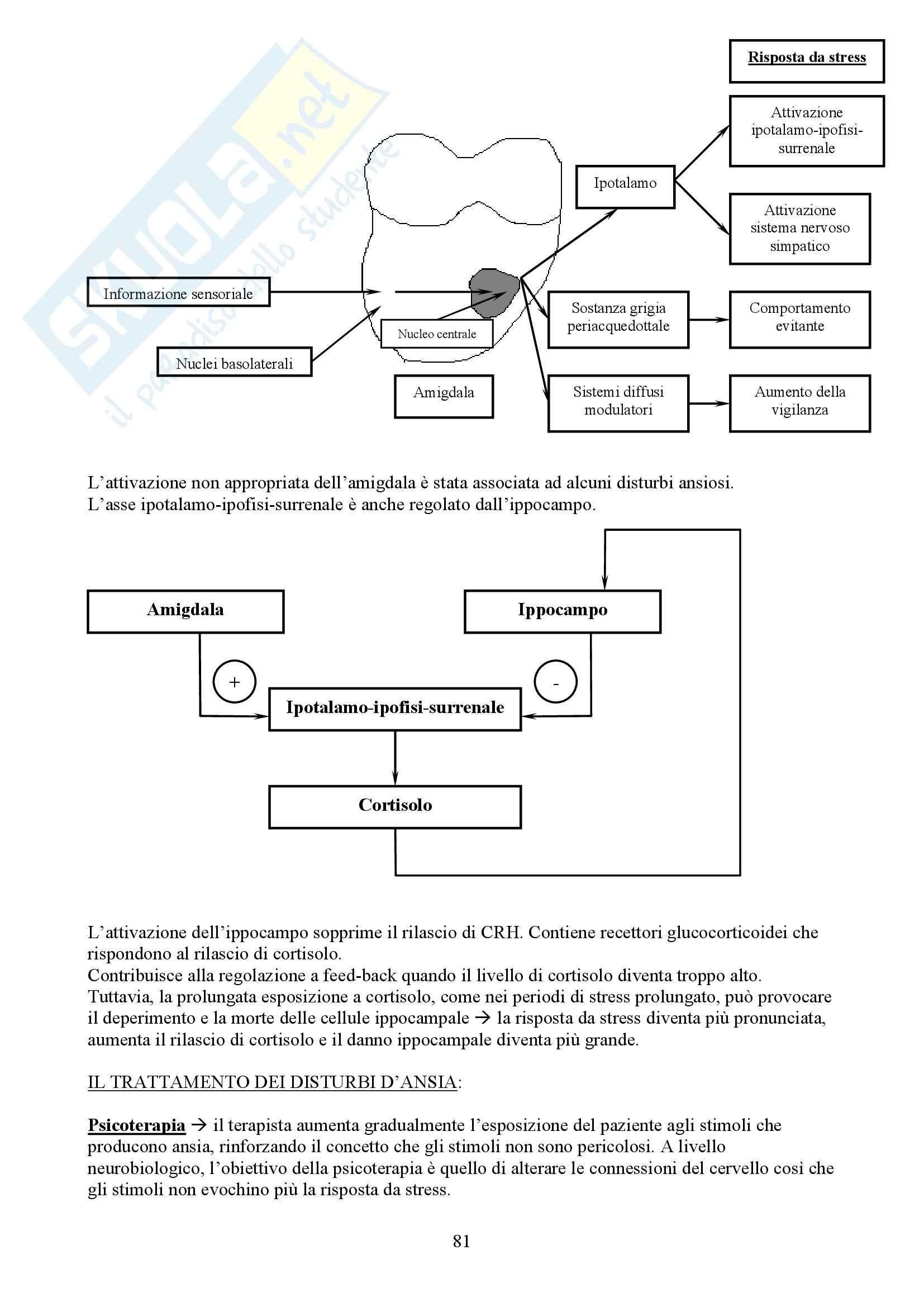 Neuropsicologia - fondamenti anatomo fisiologici dell'attività mentale Pag. 81