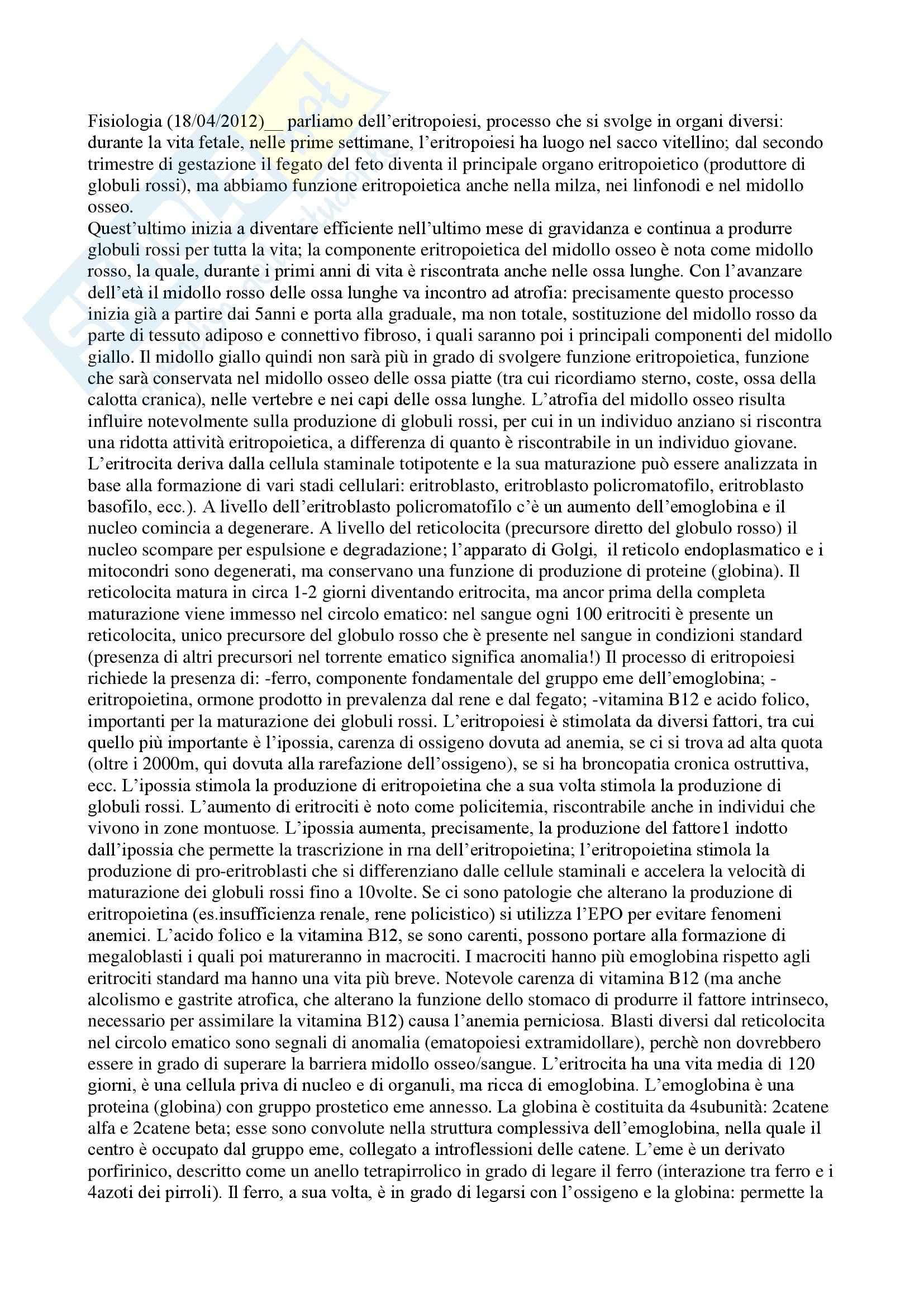 Fisiologia umana I - eritropoiesi