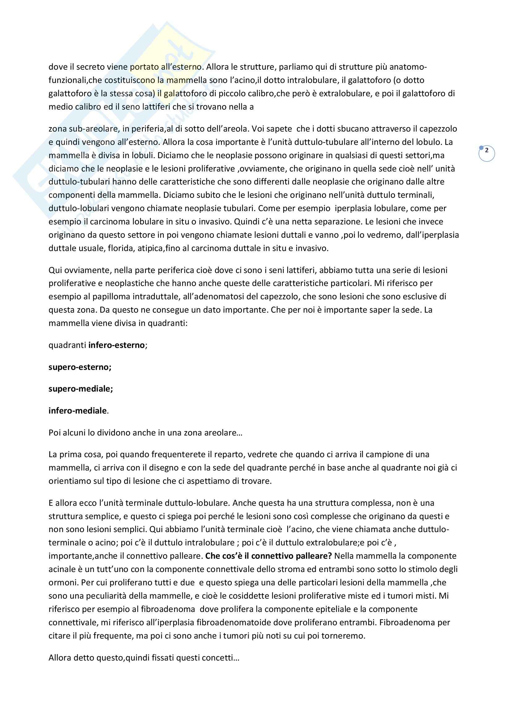 Anatomia patologica - lesioni proliferative Pag. 2