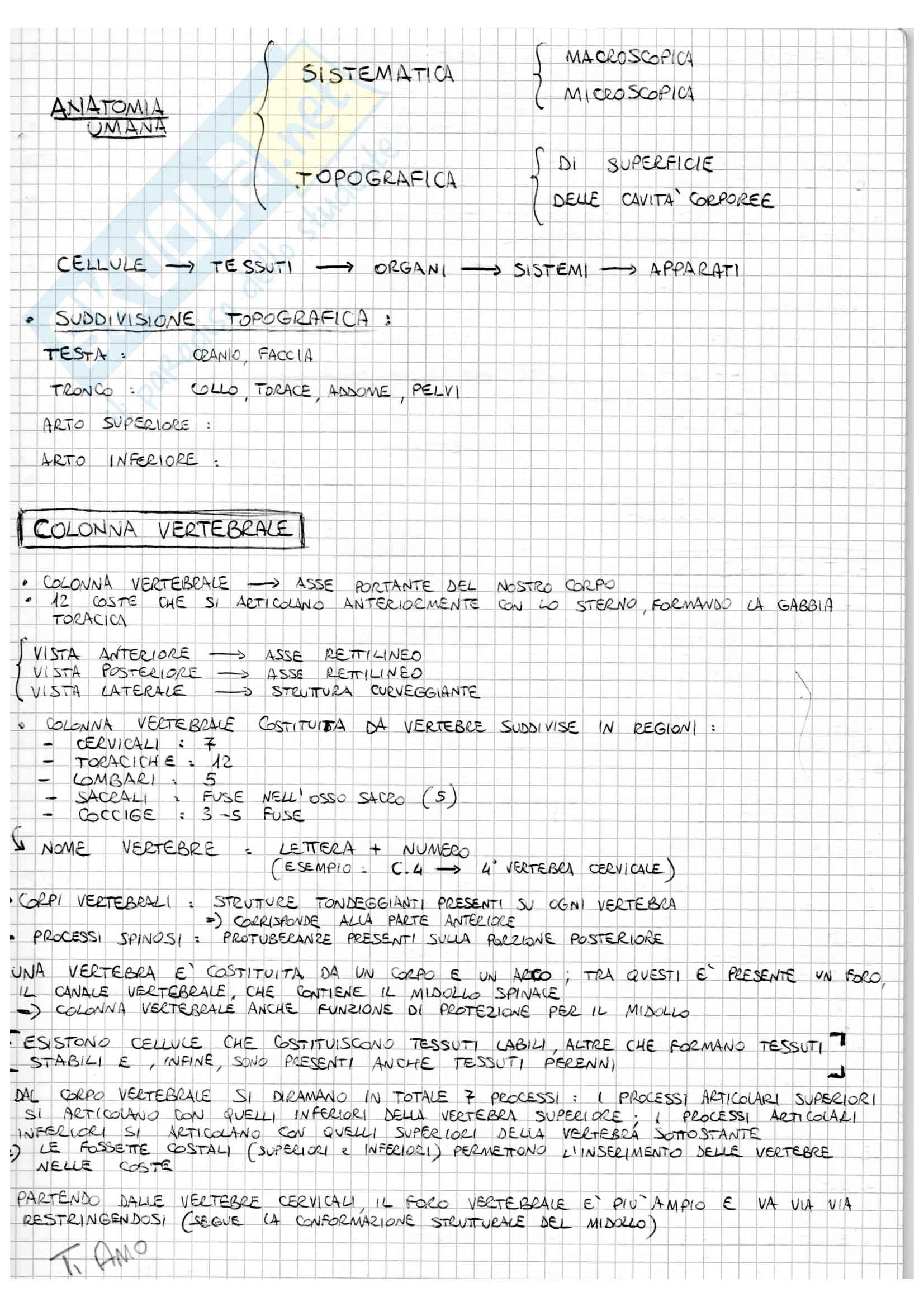 Anatomia generale - Appunti