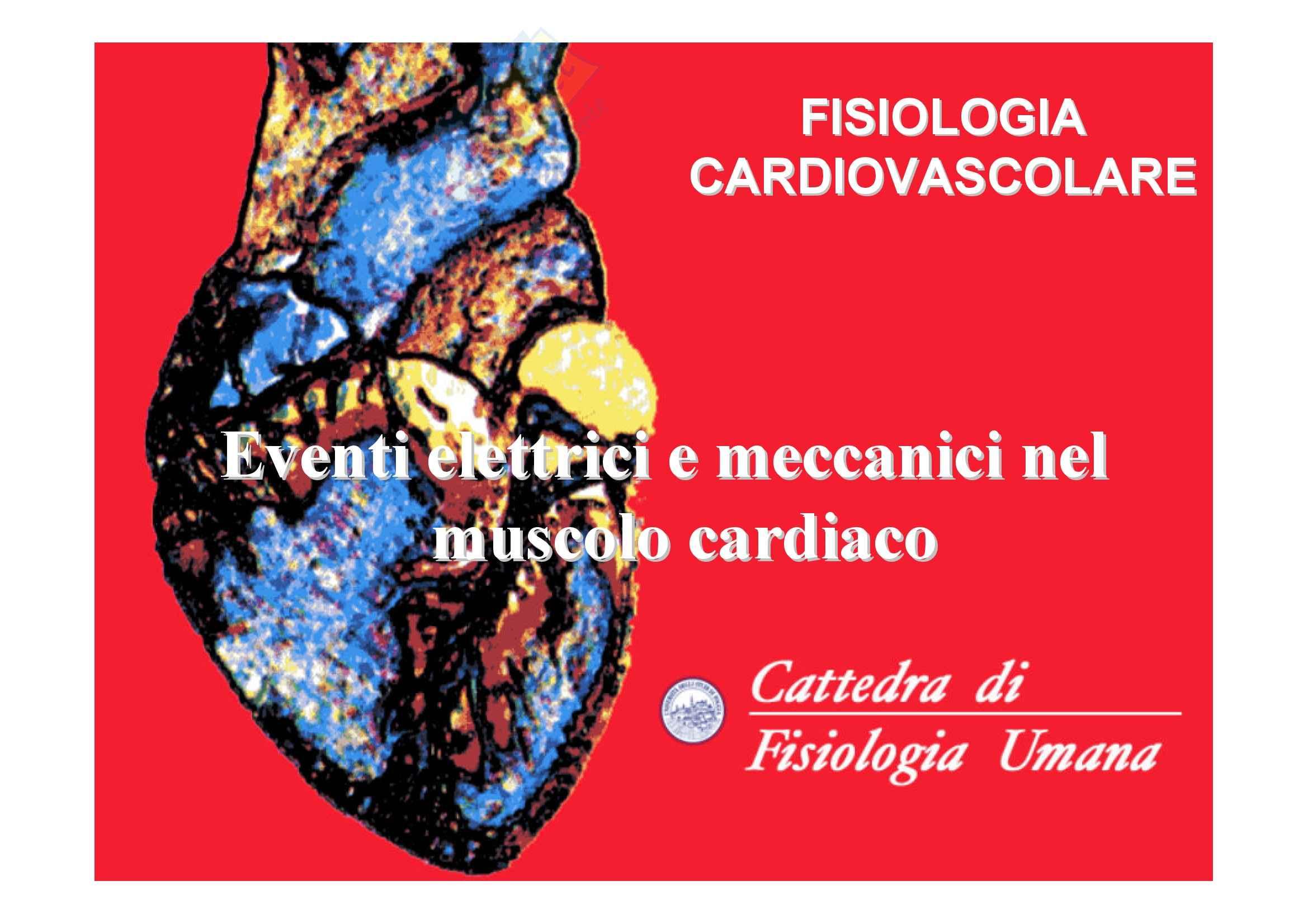 Fisiologia umana I - cuore