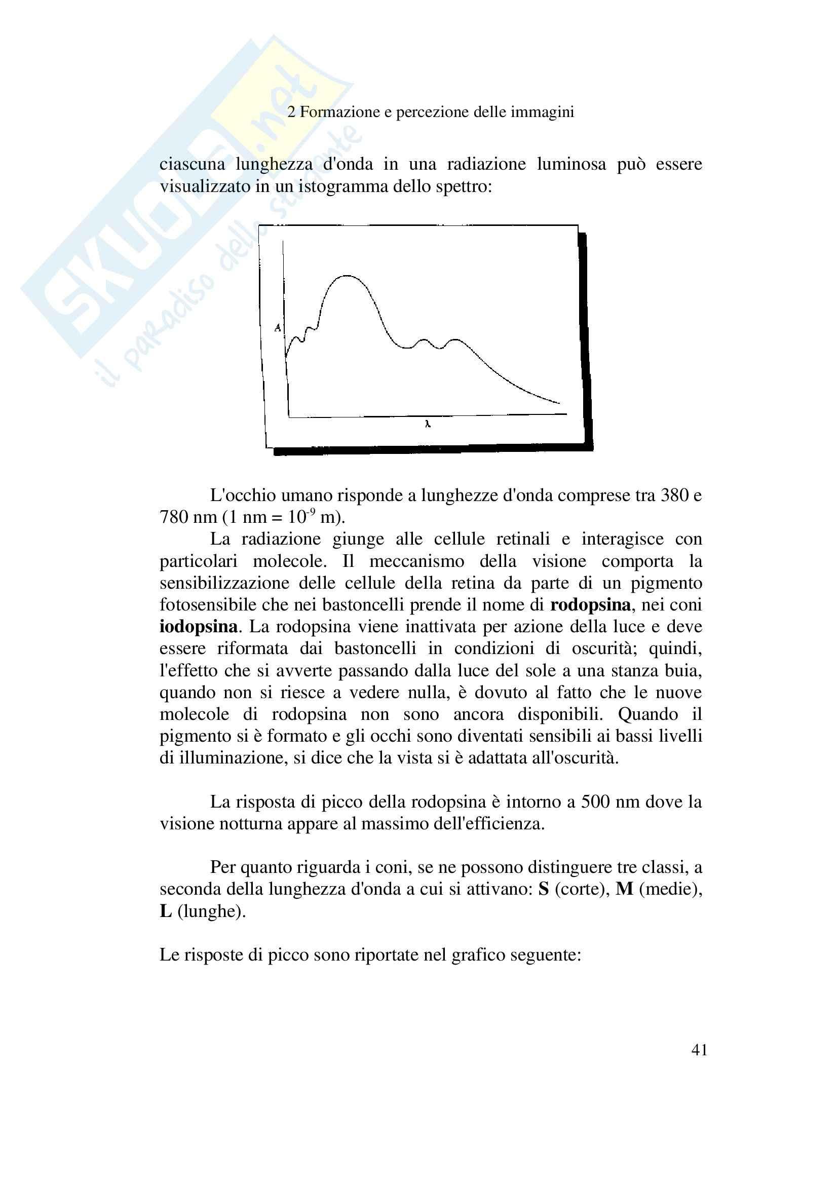 Formazione e percezione delle immagini - Appunti Pag. 41