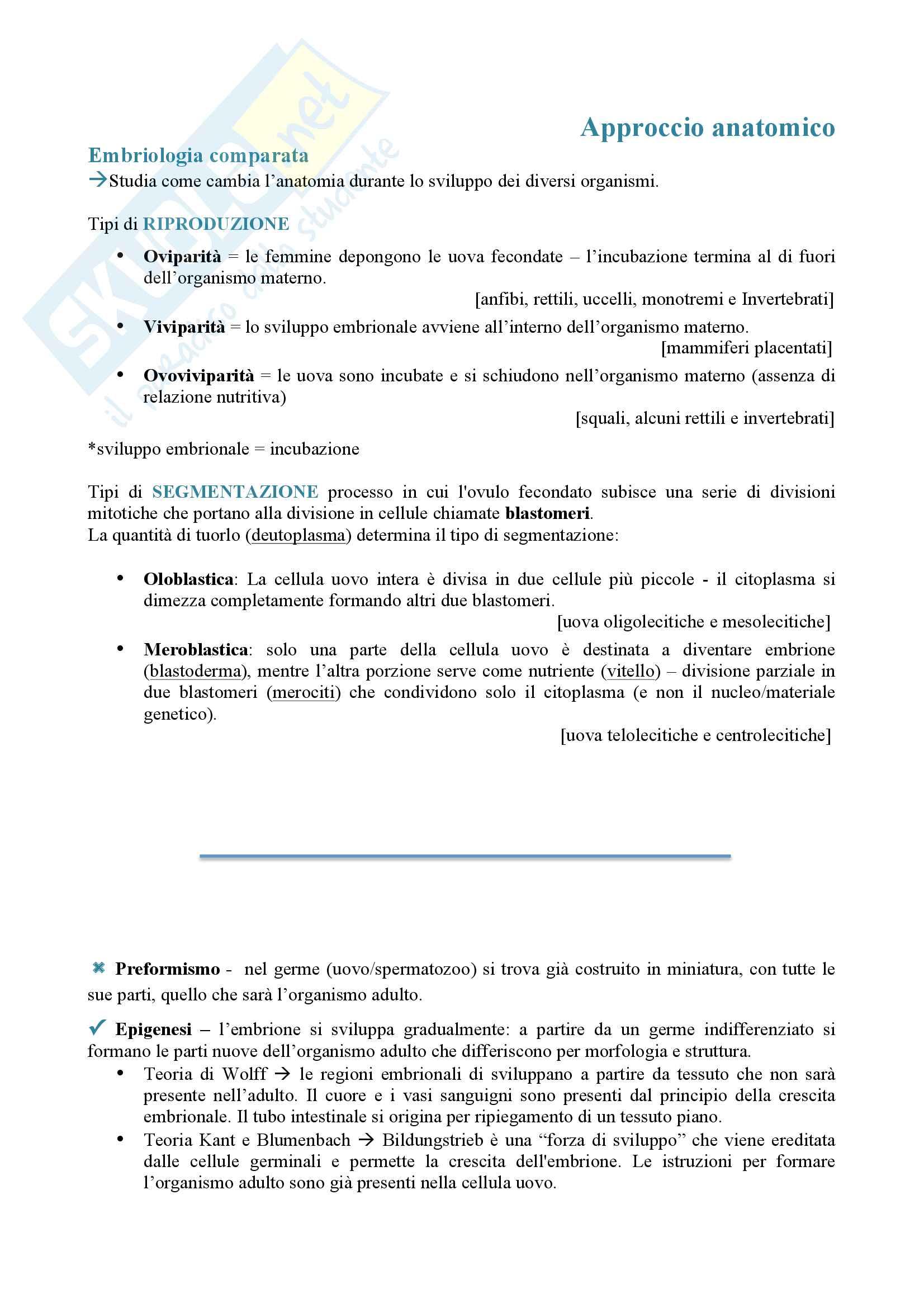 Appunti biologia dello sviluppo Pag. 2