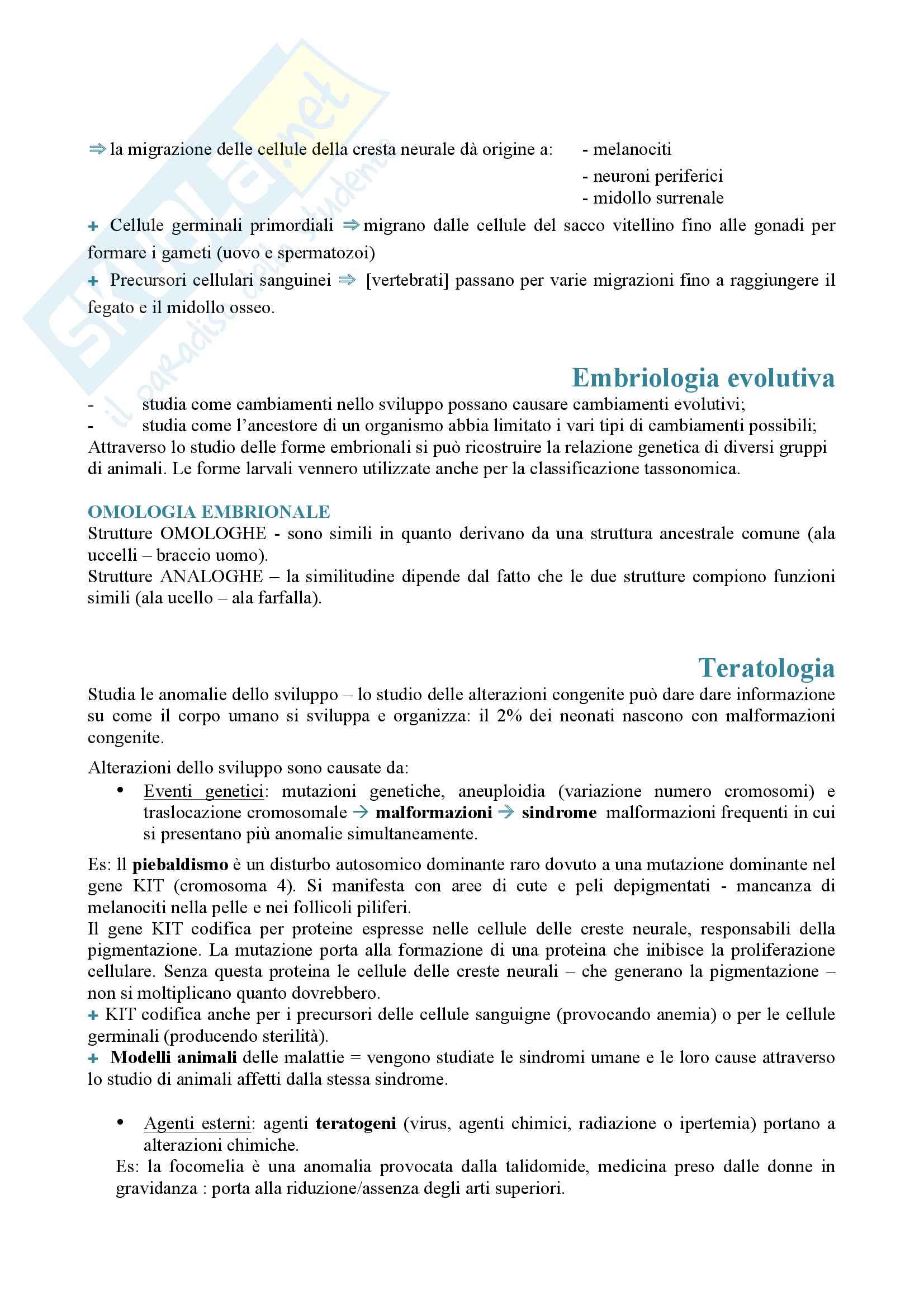 Appunti biologia dello sviluppo Pag. 6