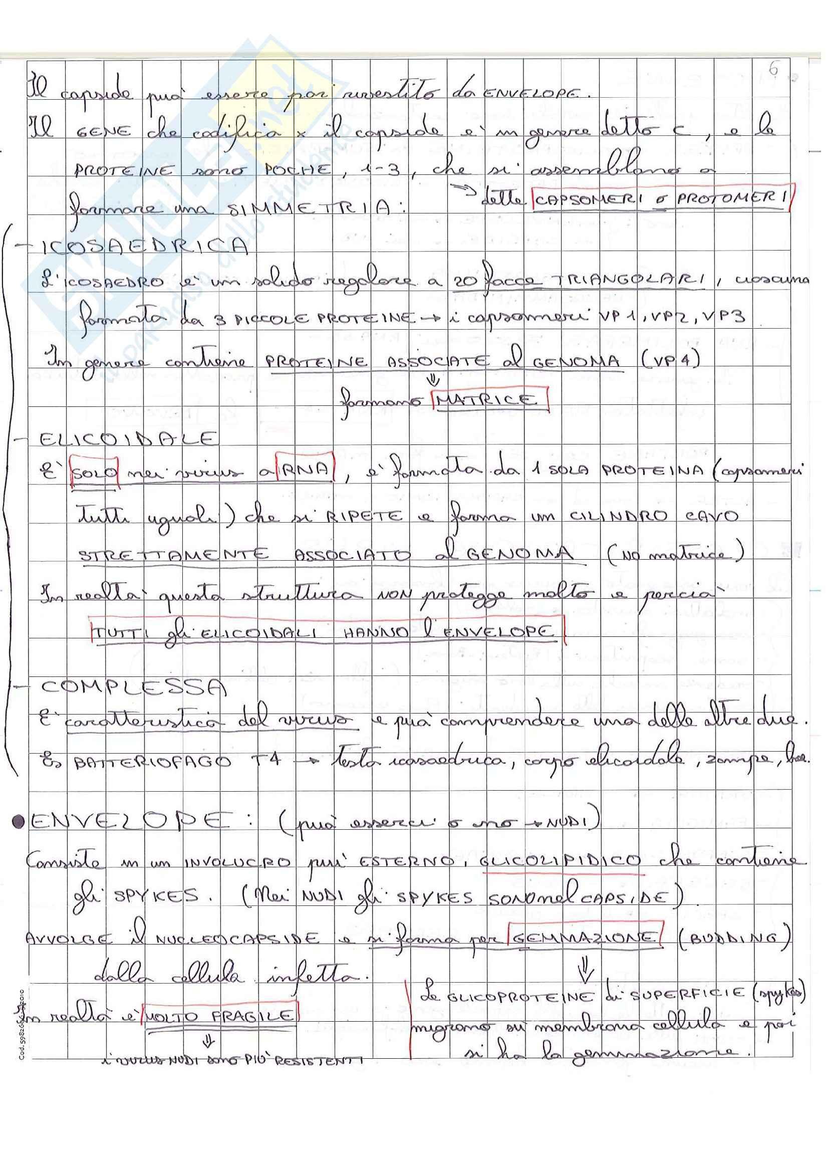 Lezioni, Microbiologia medica Pag. 11