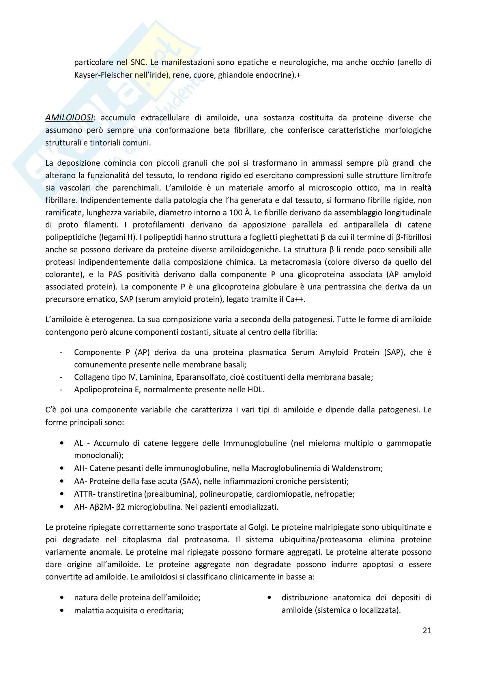 Patologia cellulare - Appunti Pag. 21