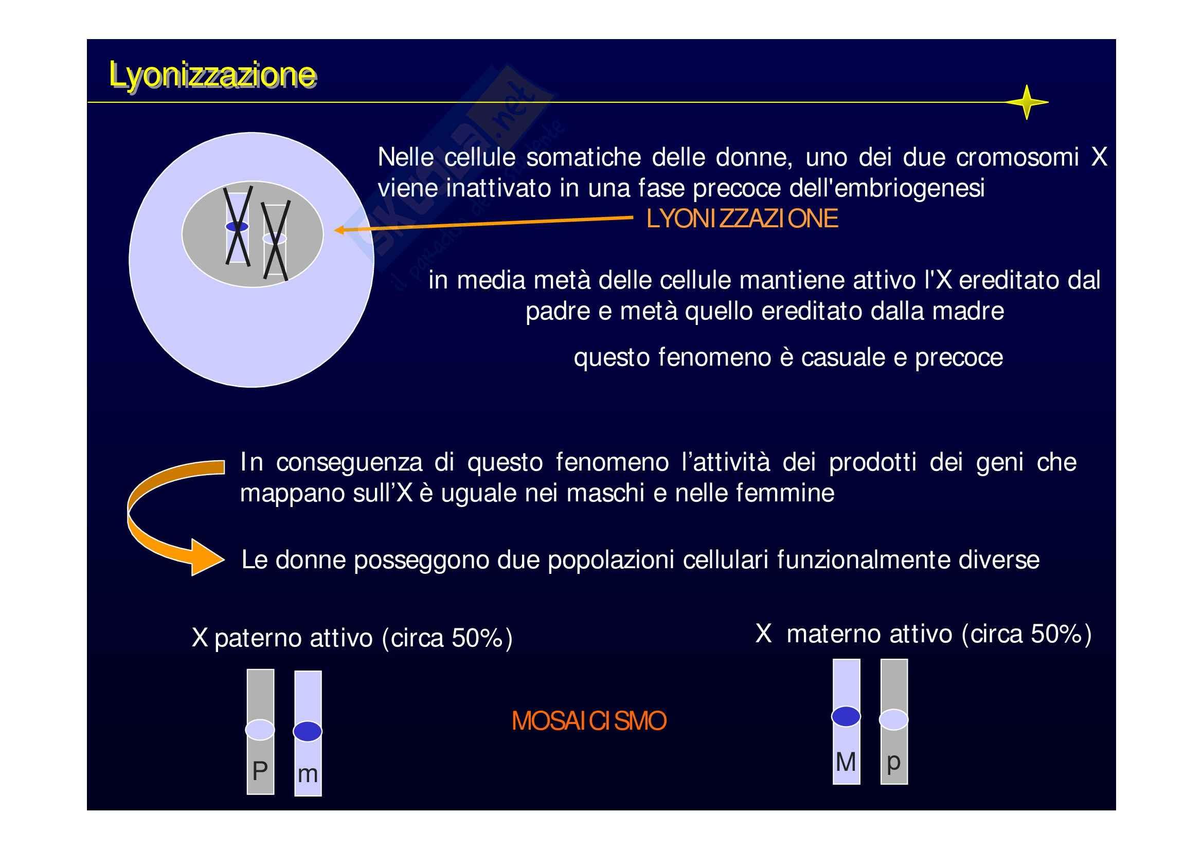 Genetica medica - lezioni Pag. 26