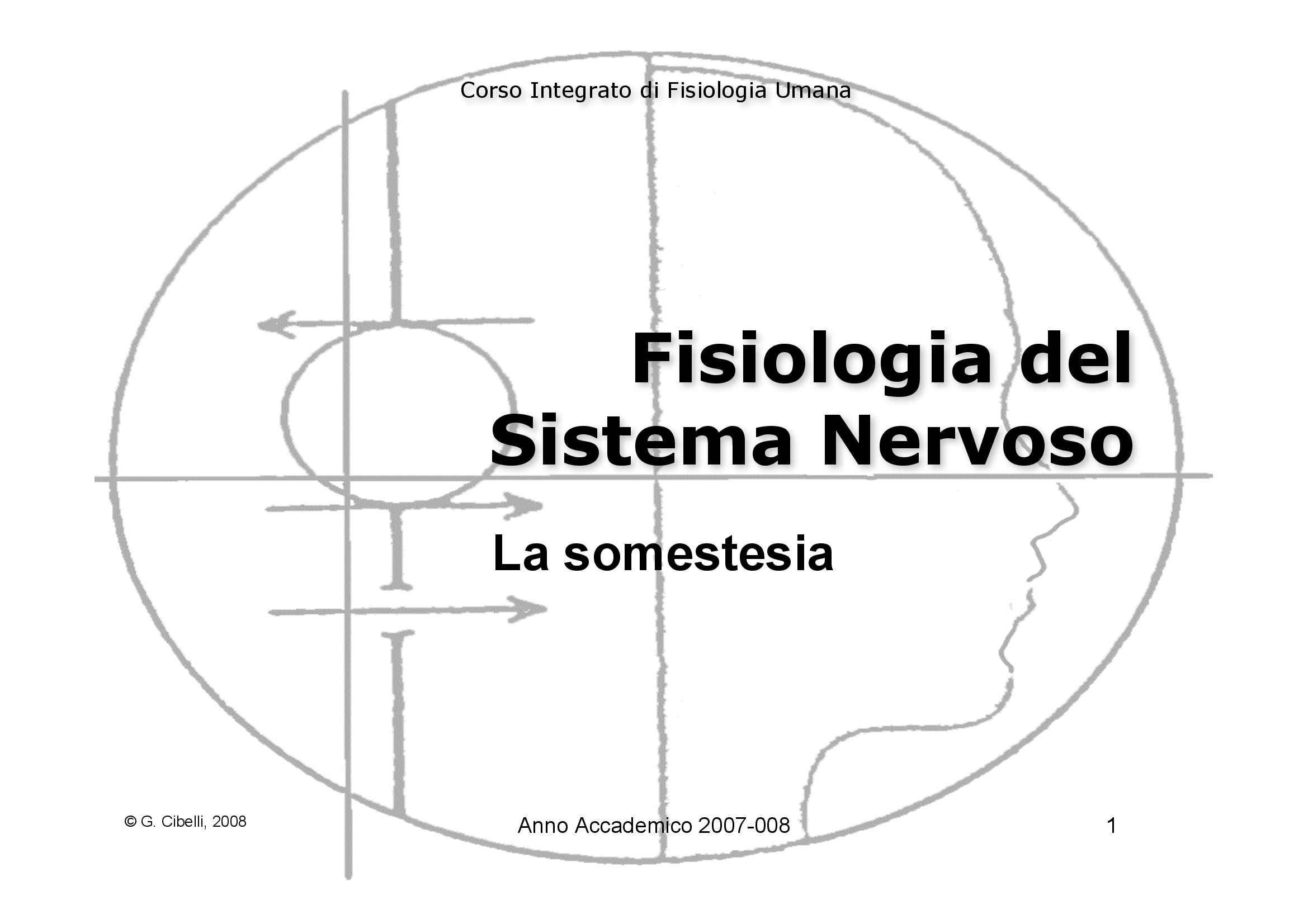 dispensa G. Cibelli Fisiologia Umana II
