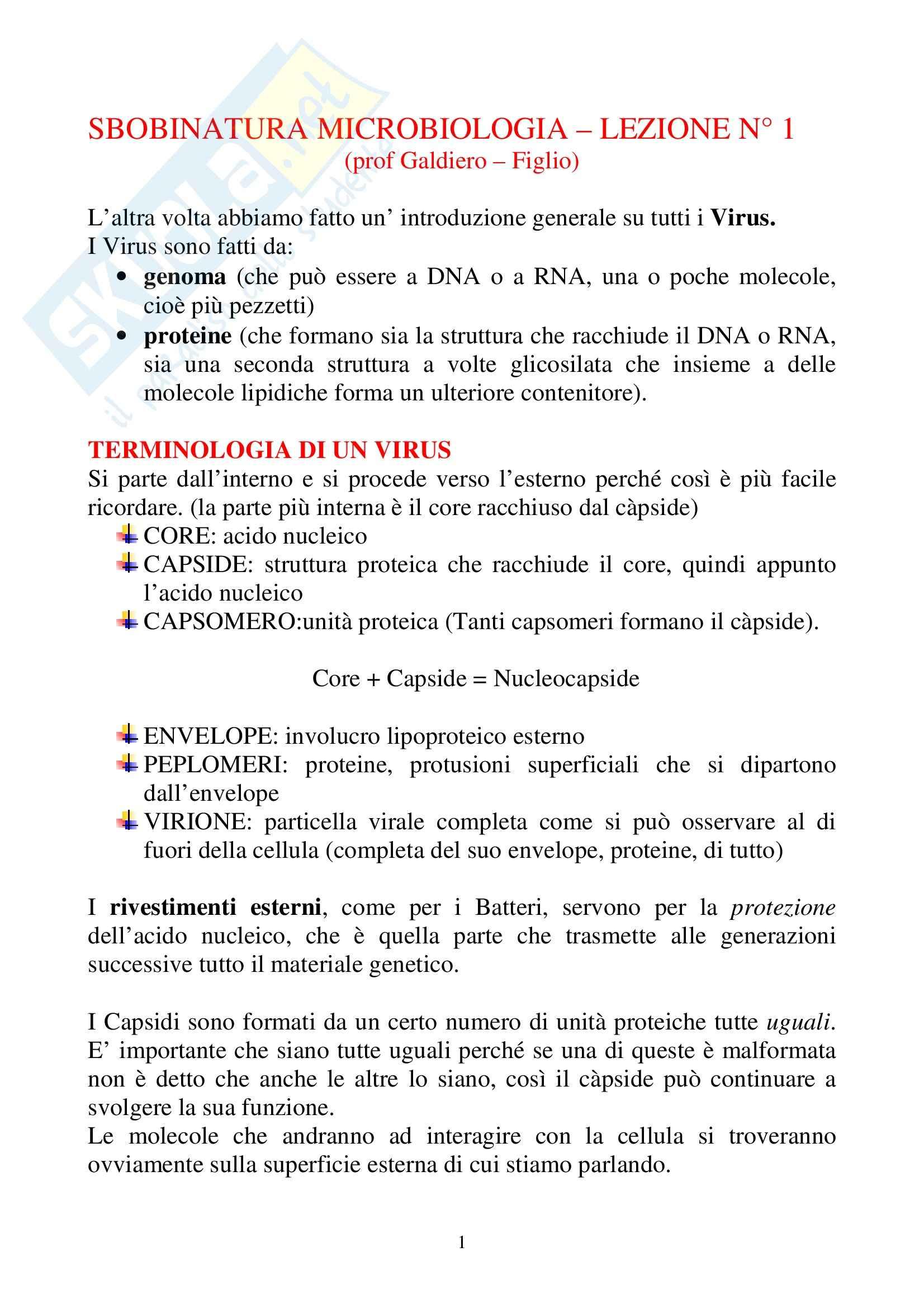 Microbiologia - virus