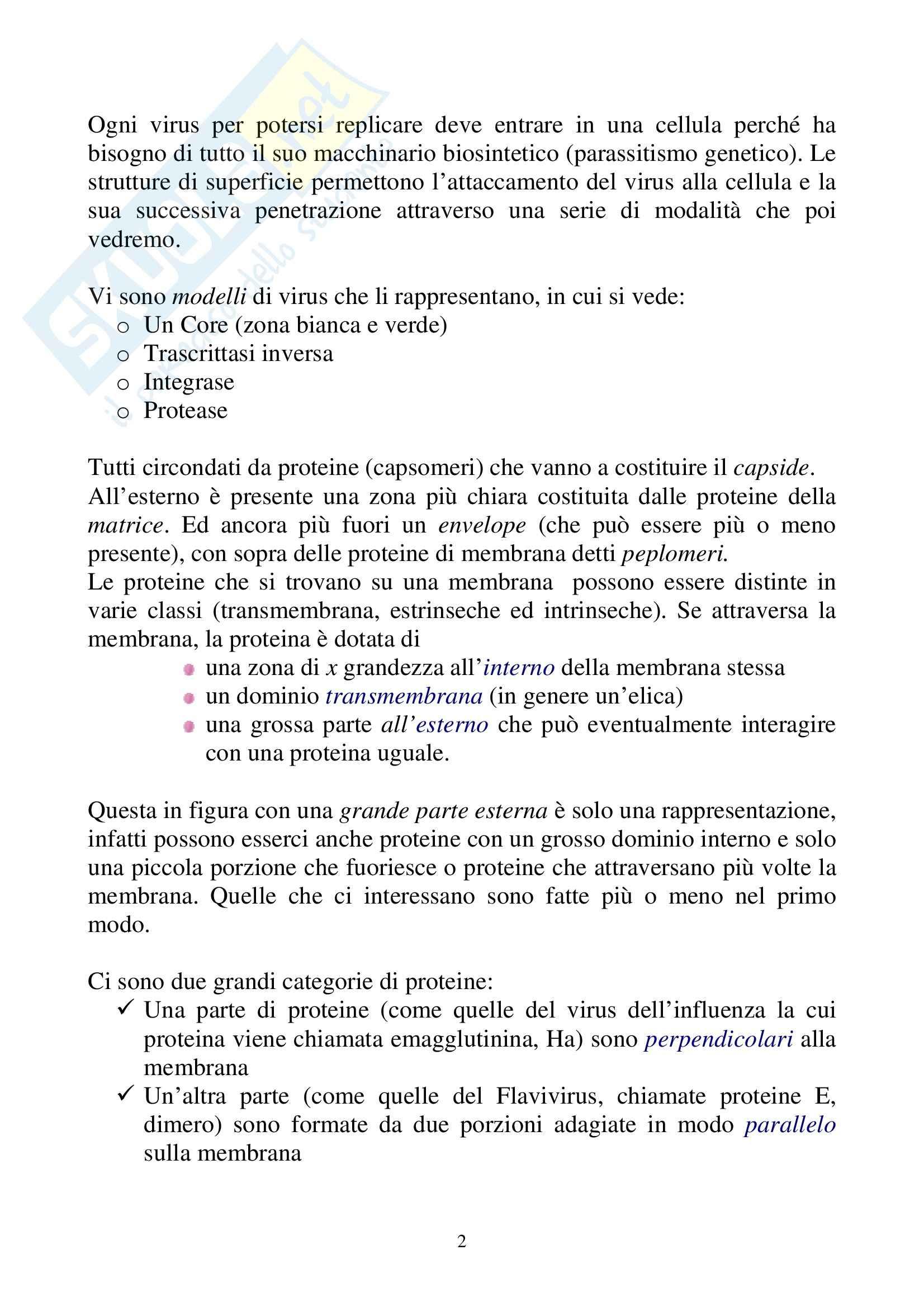 Microbiologia - virus Pag. 2