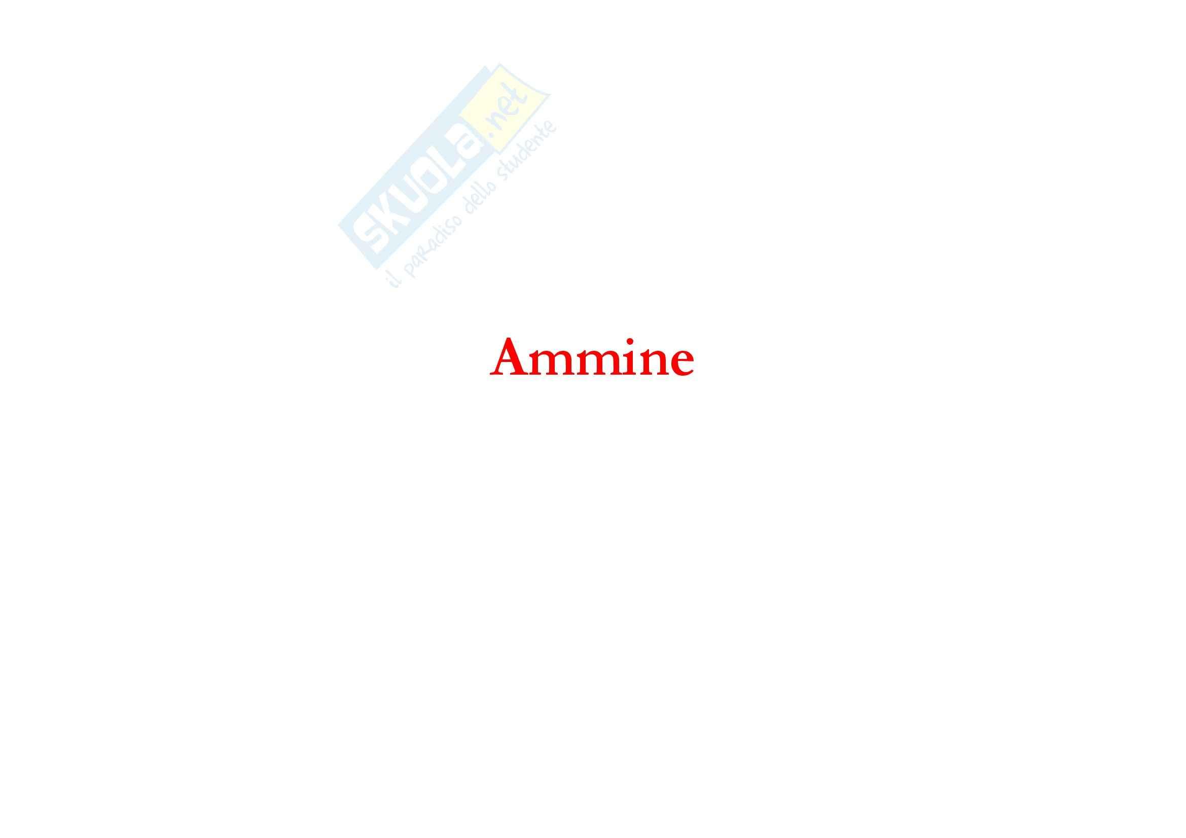 Chimica organica - reattività delle ammine