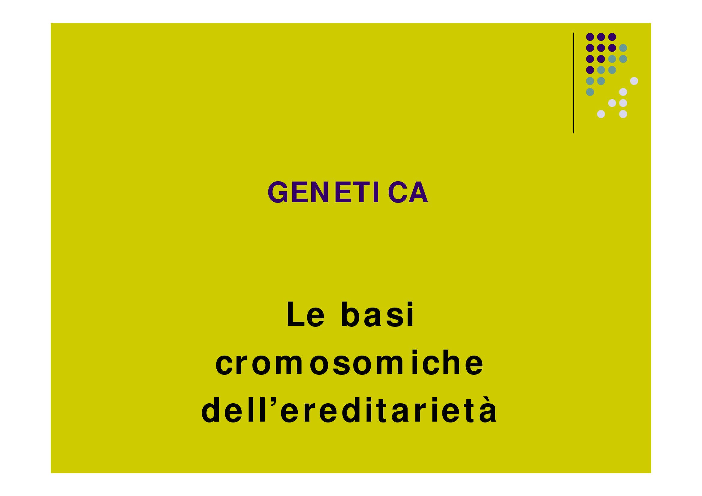 Cromosomi ed ereditarietà