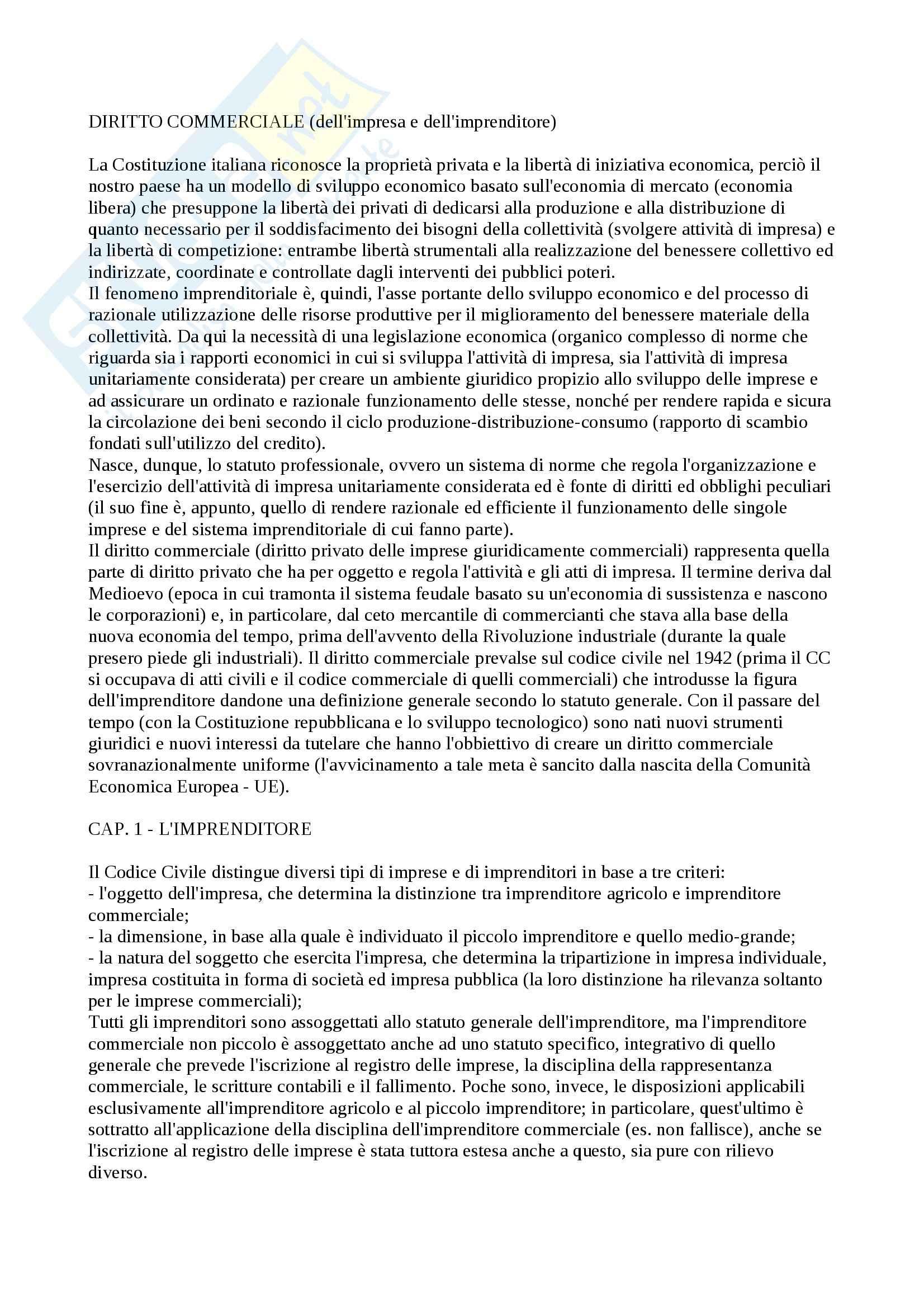 Riassunto esame Diritto commerciale, prof. Butturini