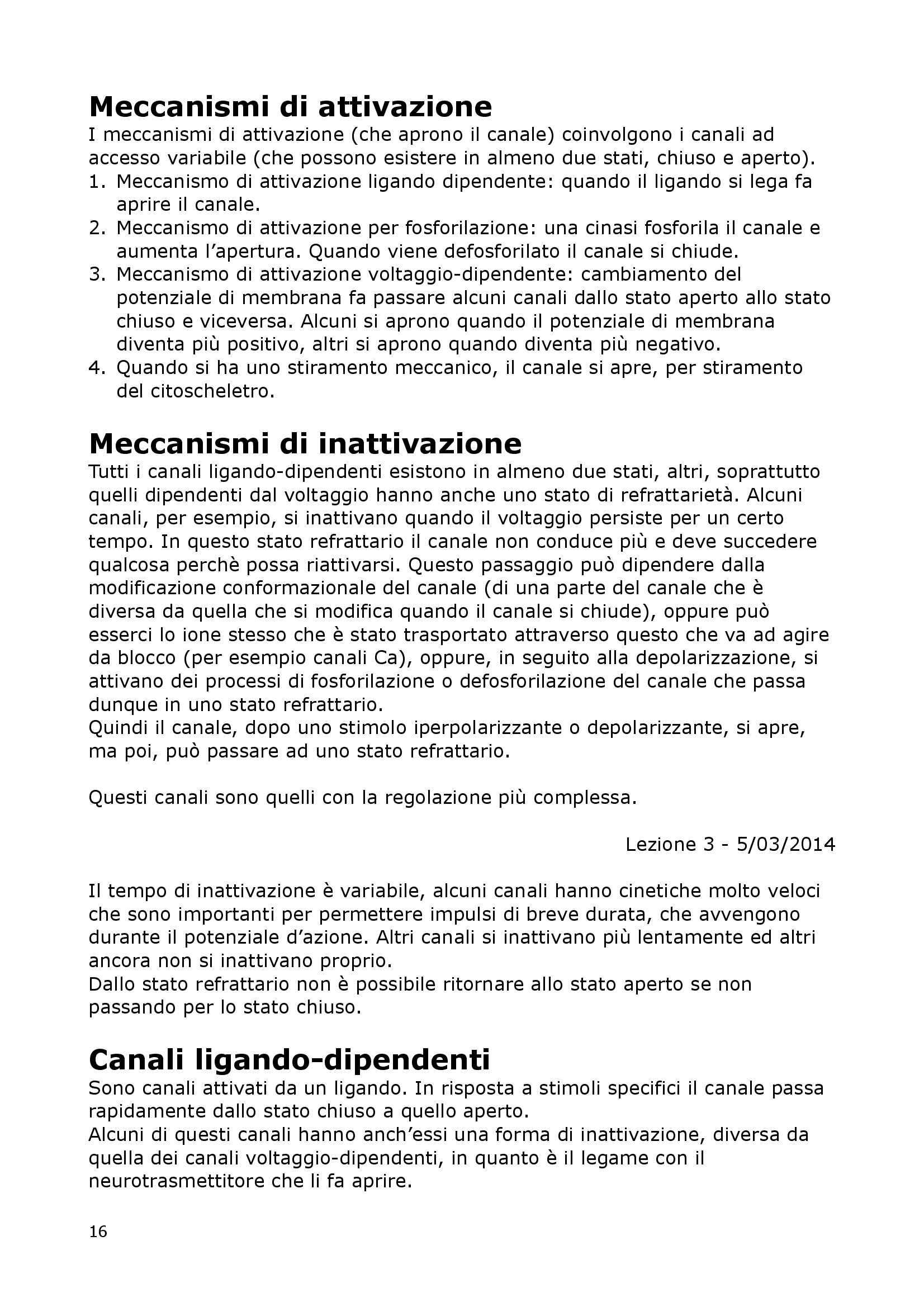 Fisiologia Del Neurone E Della Sinapsi - Fisiologia I Pag. 16