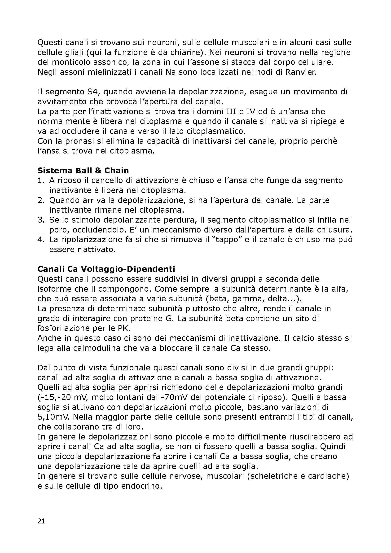 Fisiologia Del Neurone E Della Sinapsi - Fisiologia I Pag. 21