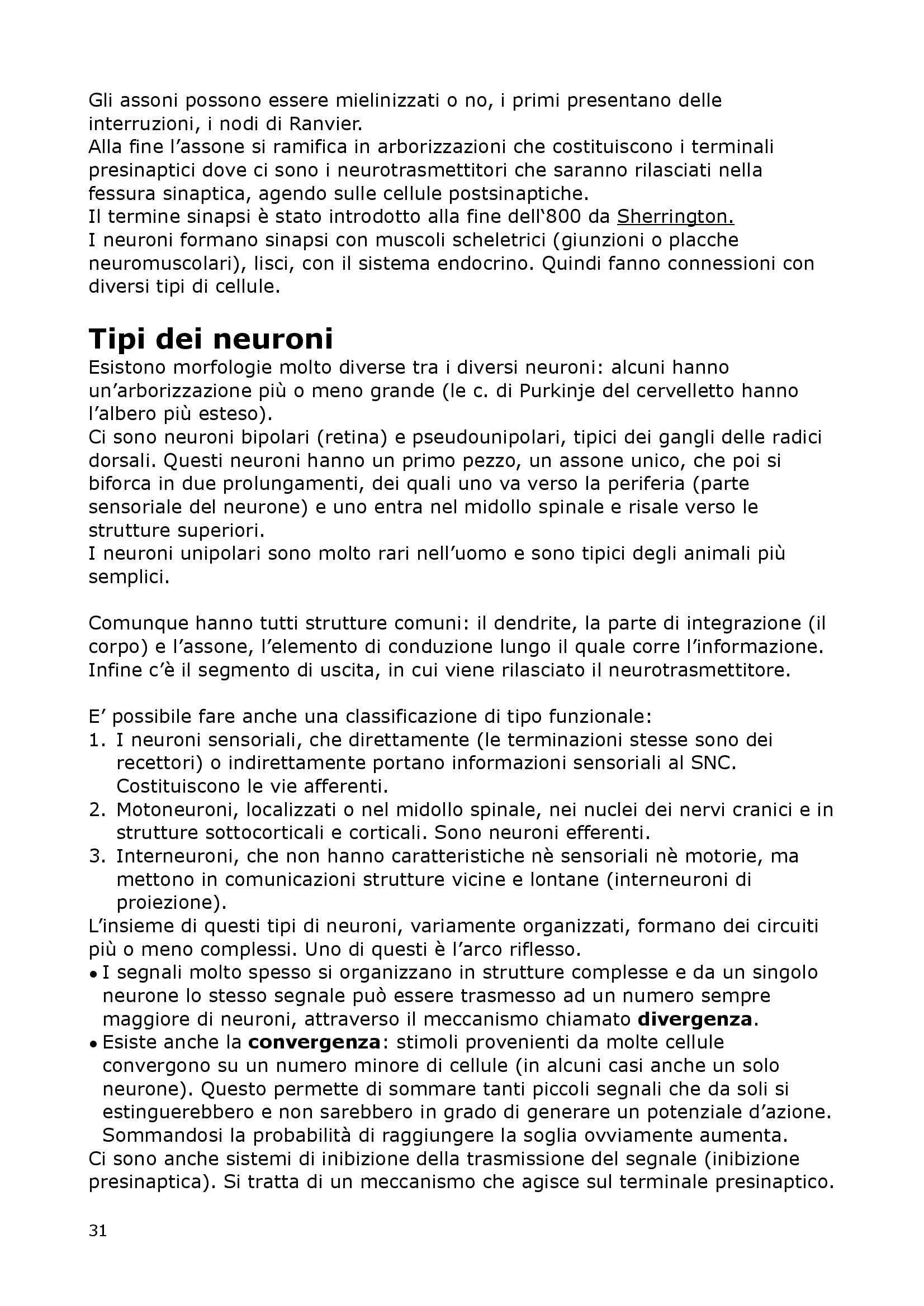 Fisiologia Del Neurone E Della Sinapsi - Fisiologia I Pag. 31