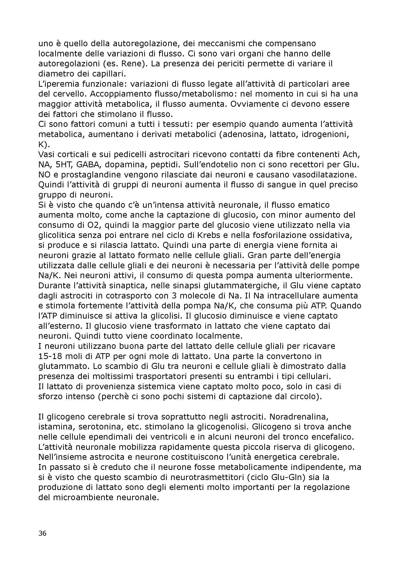 Fisiologia Del Neurone E Della Sinapsi - Fisiologia I Pag. 36
