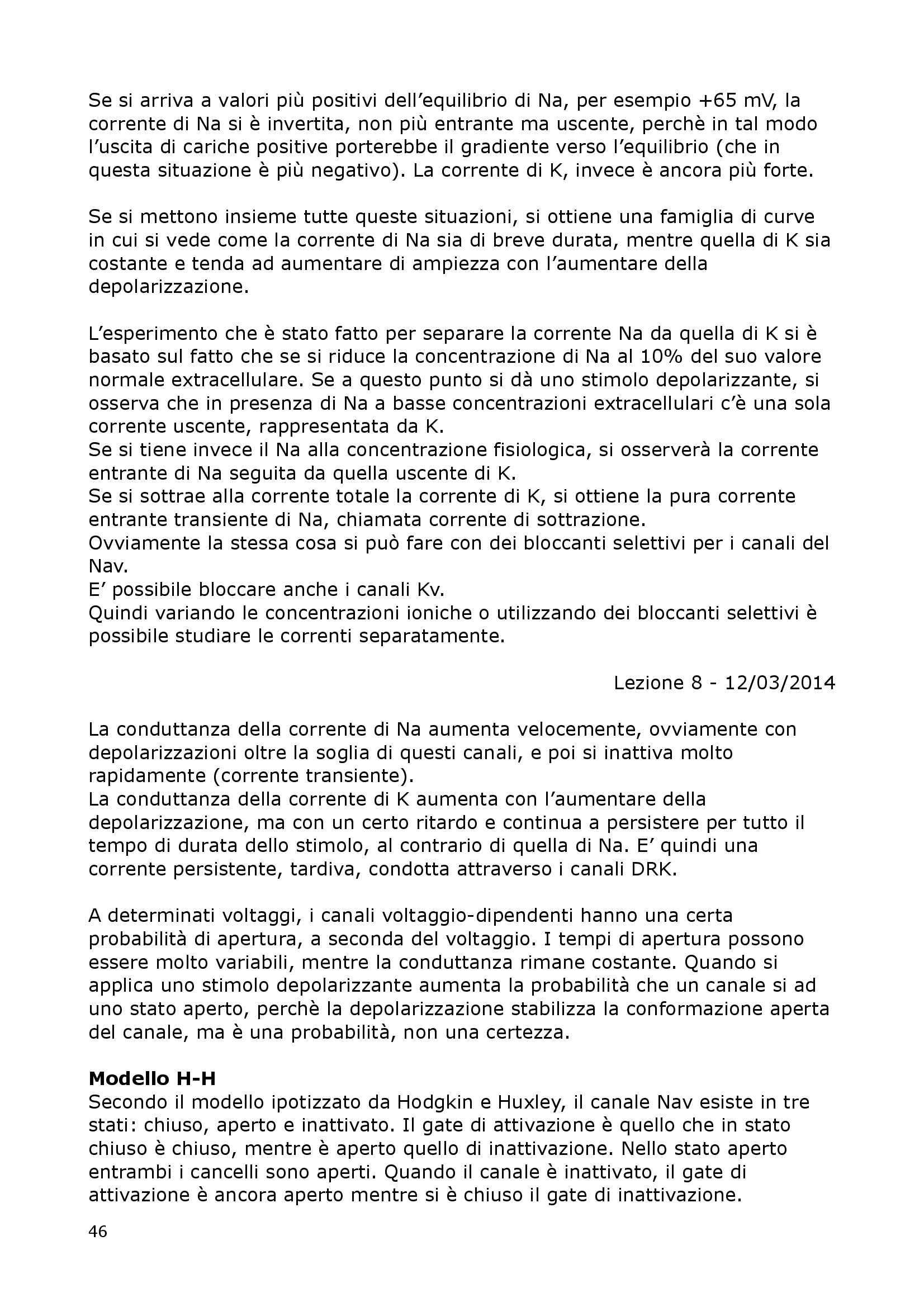 Fisiologia Del Neurone E Della Sinapsi - Fisiologia I Pag. 46