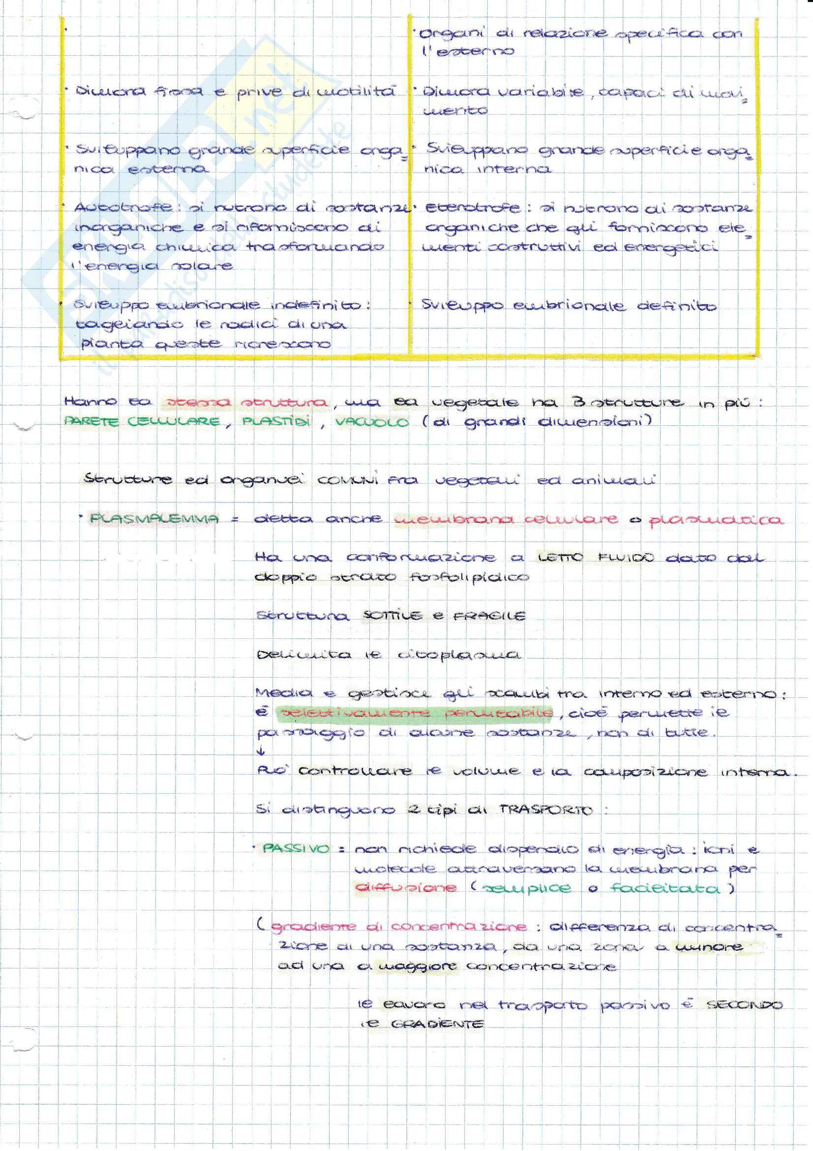 Biologia, Prof Bruni Pag. 21