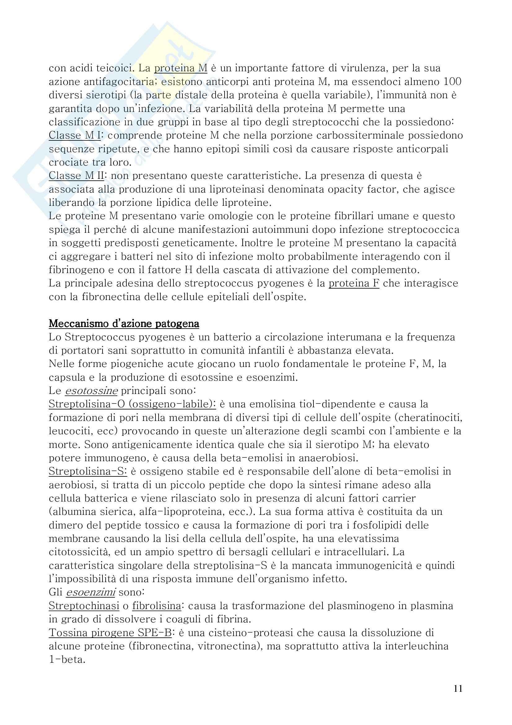 Microbiologia Pag. 11