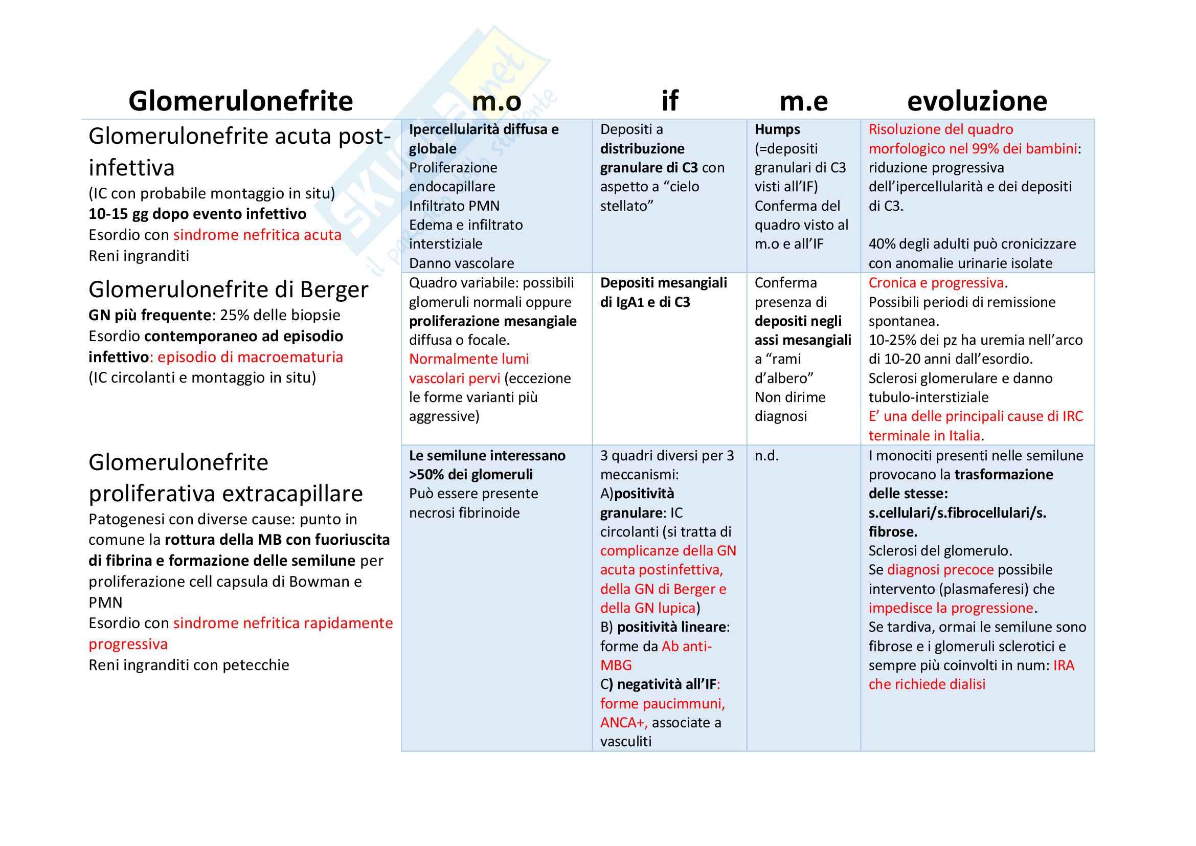 Riassunti di Anatomia Patologica Pag. 2