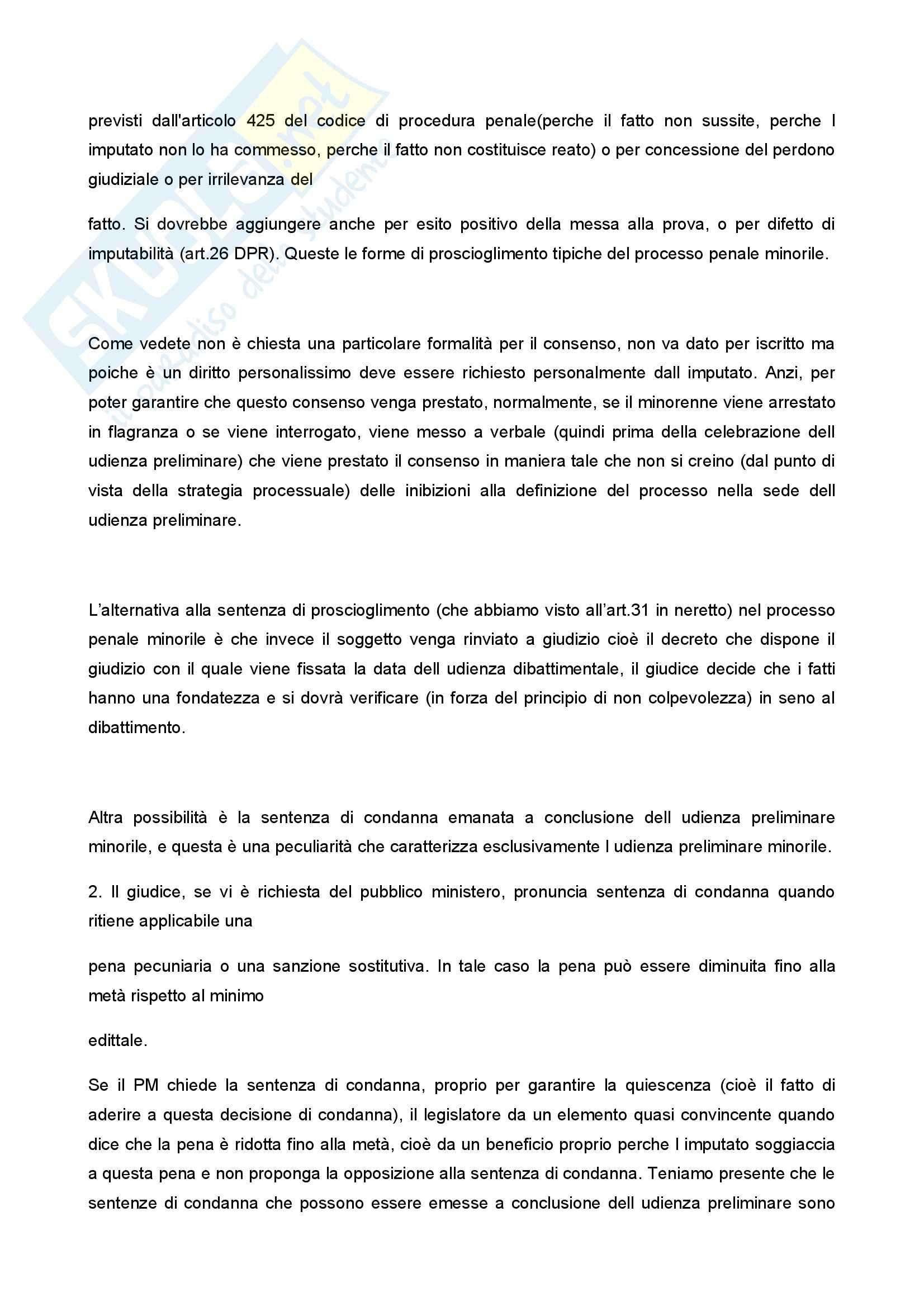Diritto penale minorile - Corso completo Pag. 101