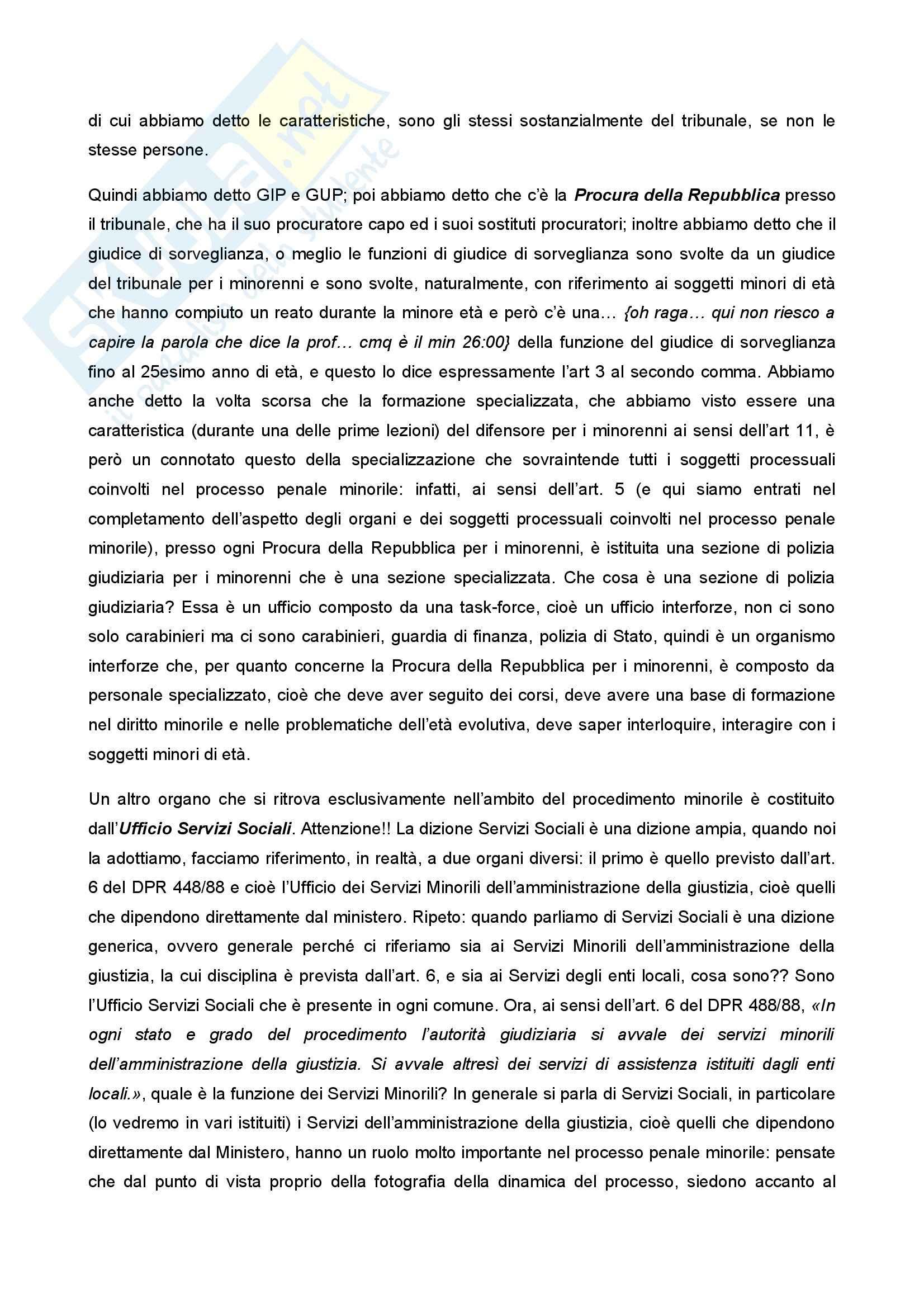 Diritto penale minorile - Corso completo Pag. 41