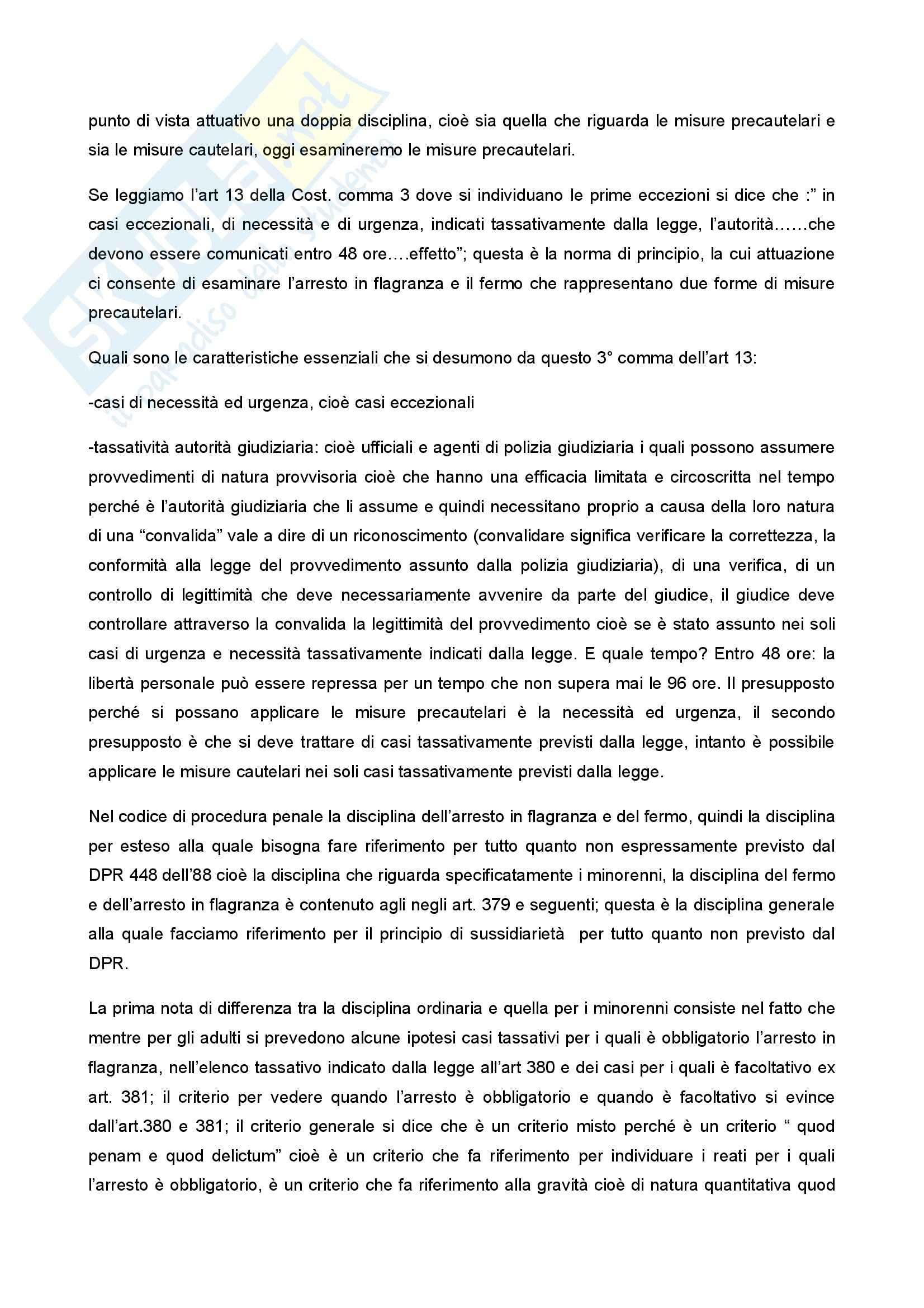 Diritto penale minorile - Corso completo Pag. 81